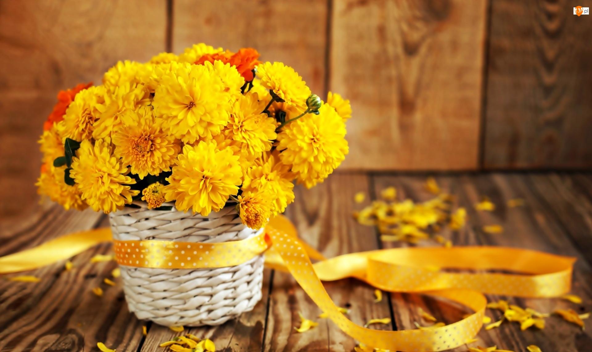 Wstążka, Chryzantemy, Kwiatów, Bukiet, Płatki, Żółte, Koszyczek
