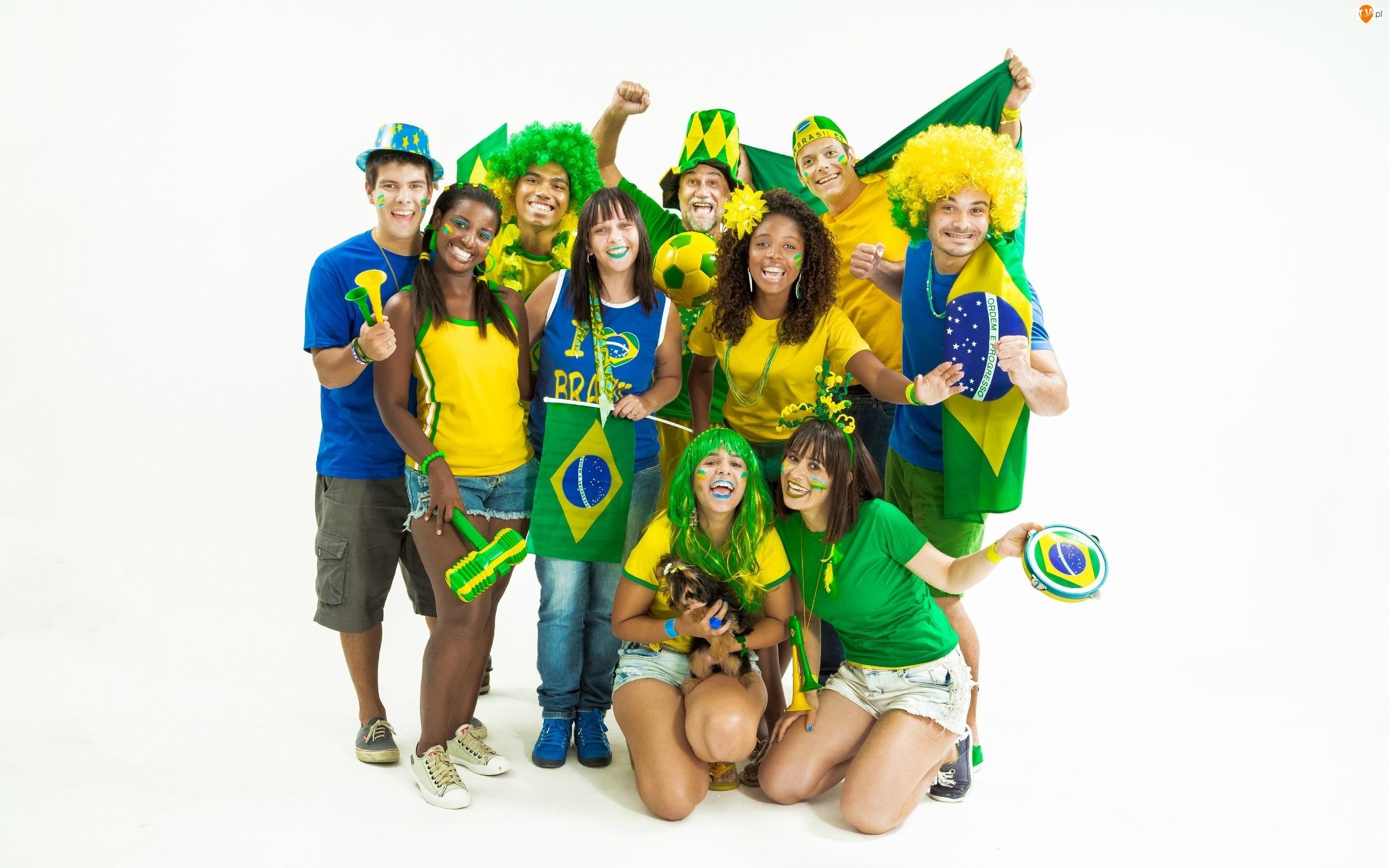 2014, Brazylijscy, Mistrzostwa, Kibice, Świata