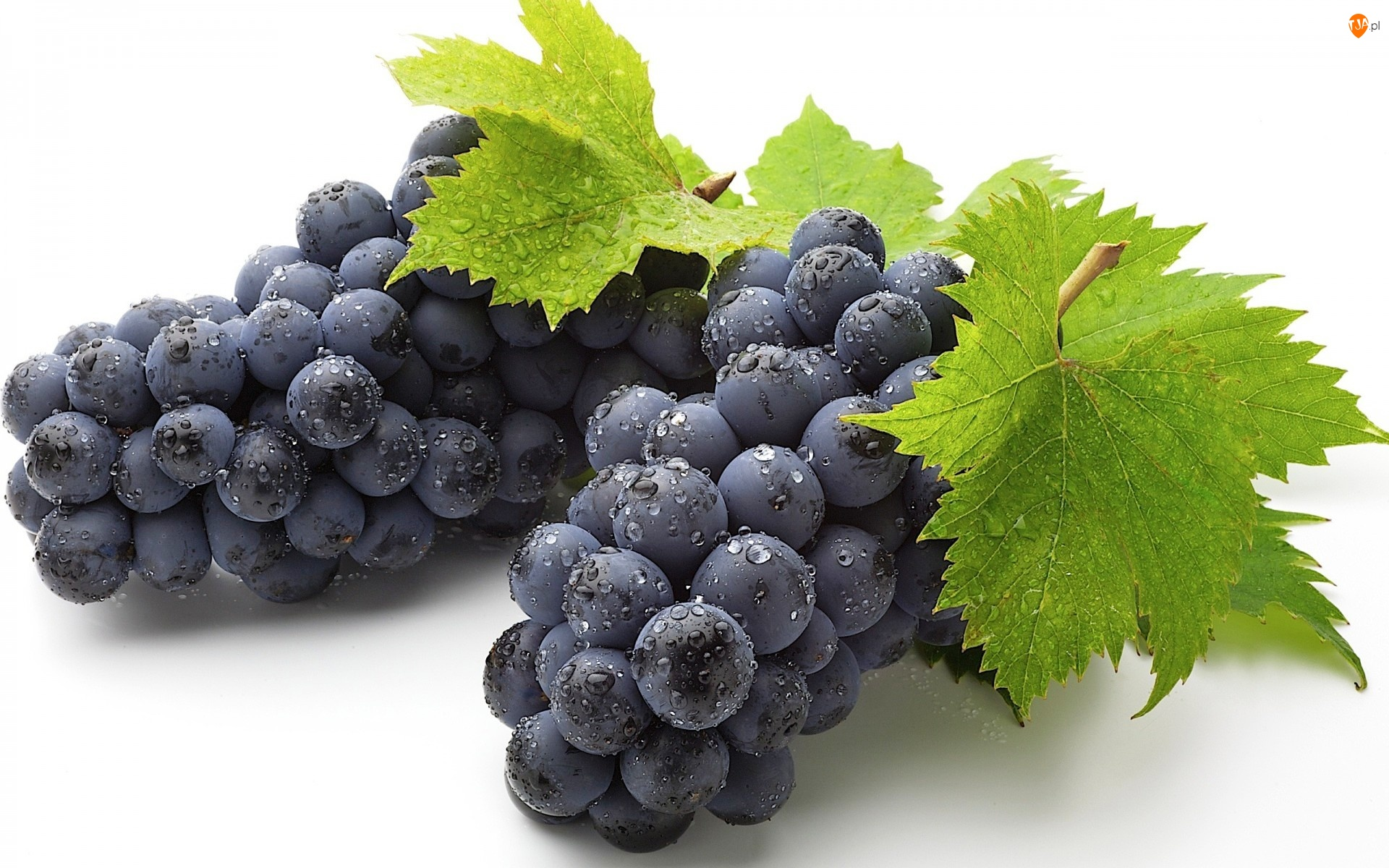 Winogrona, Wody, Listki, Krople