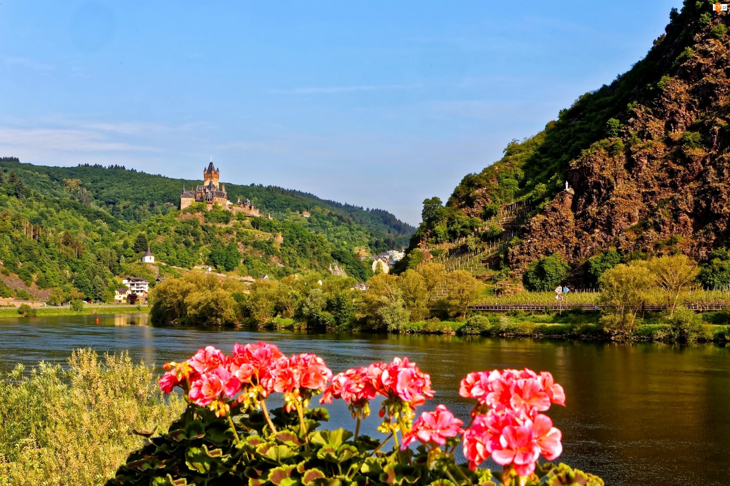 Lasy, Cochem, Rzeka, Pelargonie, Góry, Zamek