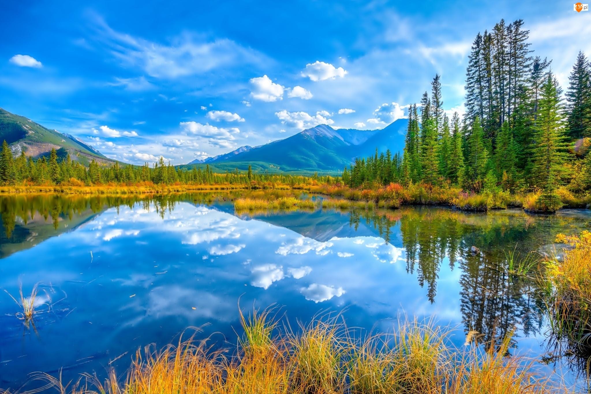 kanada, Góry, Las, Jezioro, Banff