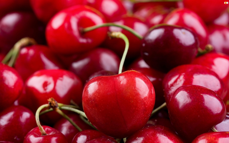 Owoce, Wiśnie, Wiśnia