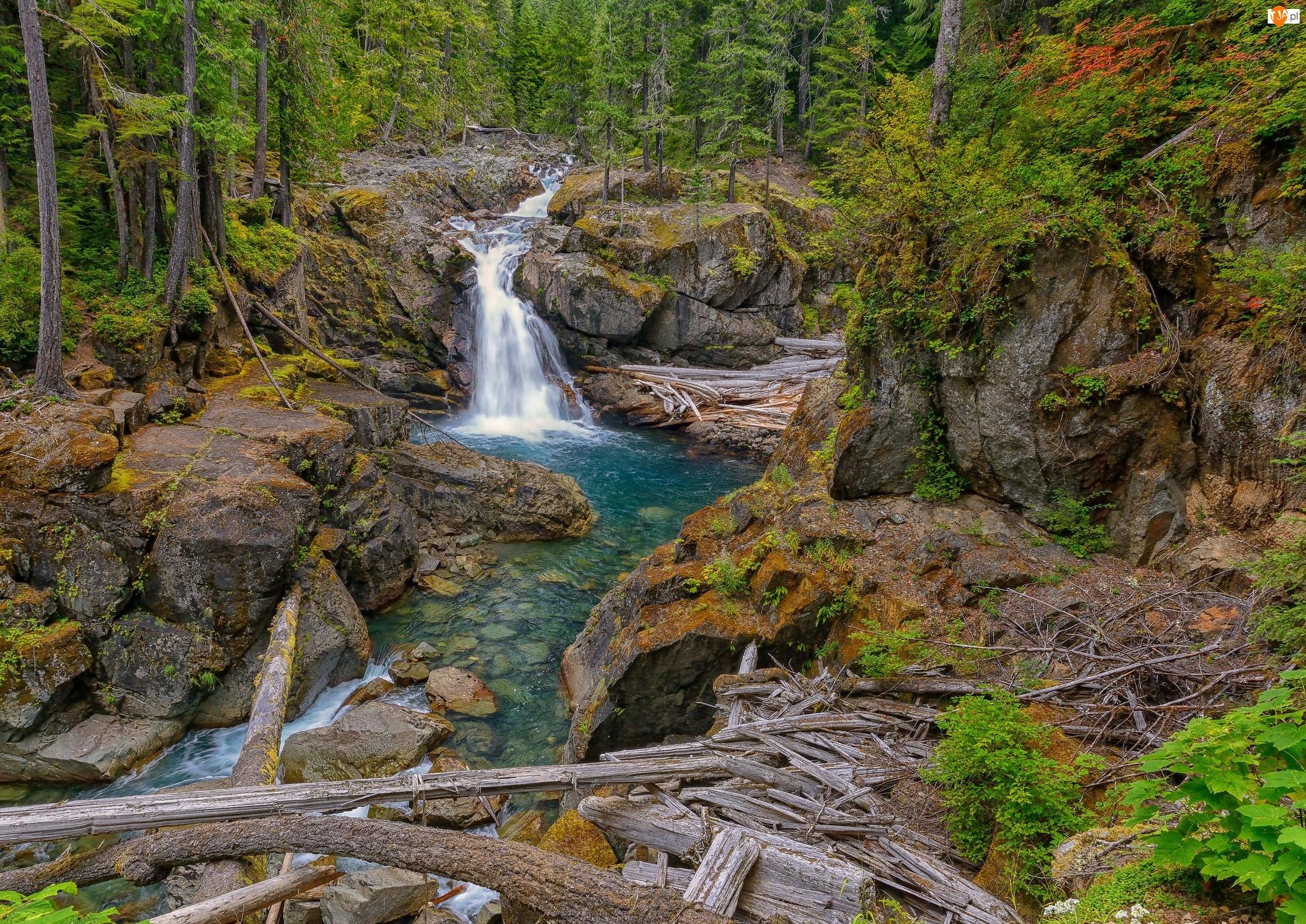 Wodospad, Roślinność, Kamienie, Rzeczka