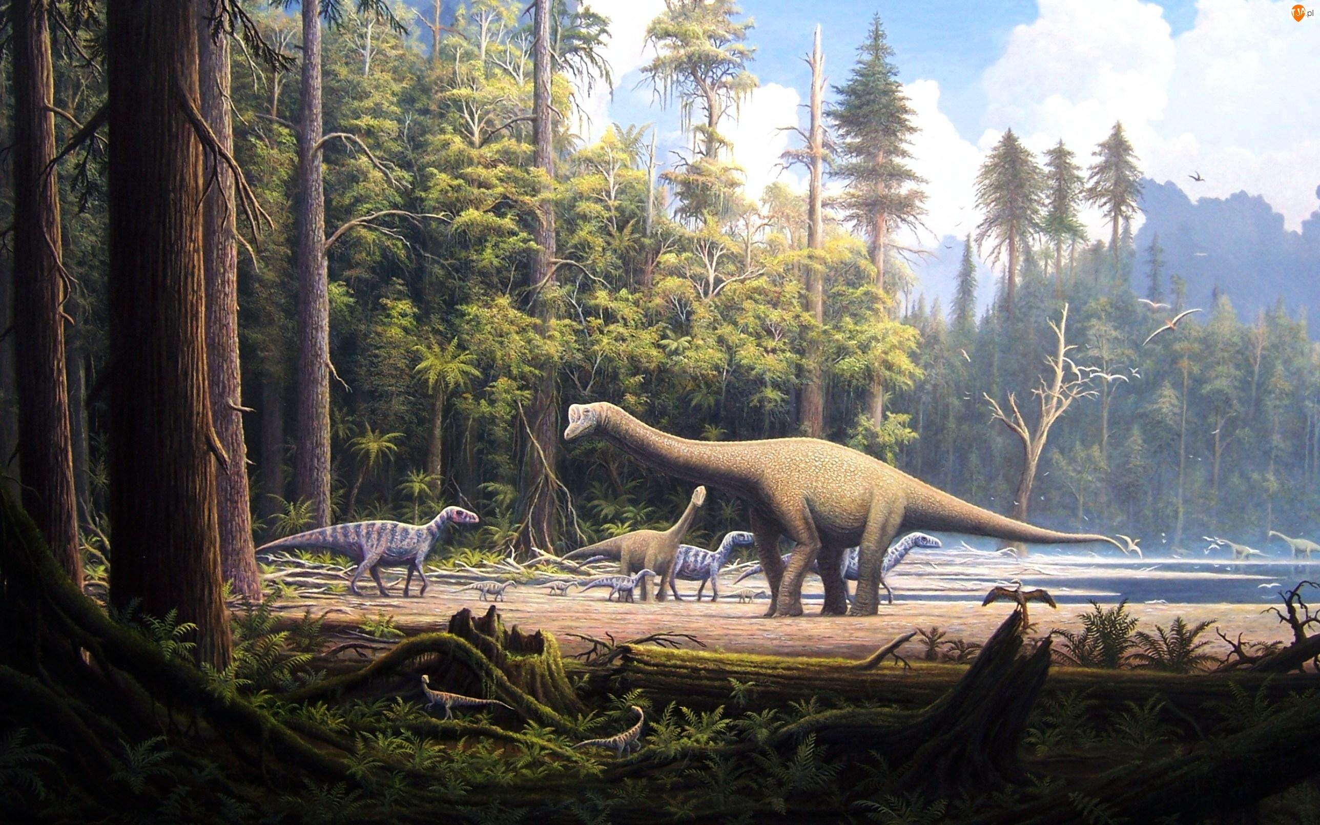 Dinozaury, Las