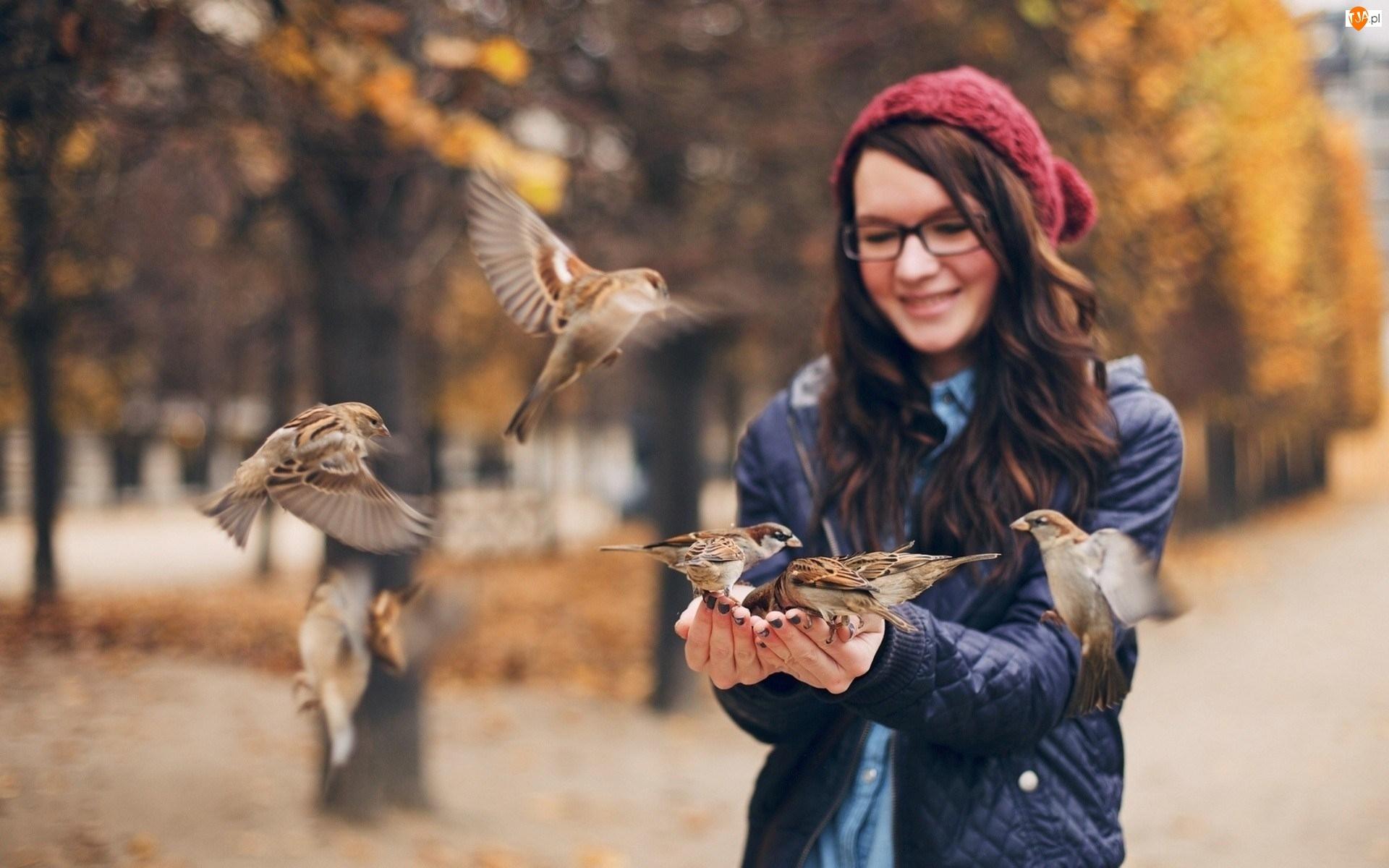 Dziewczyna, Ptaki, Wróbel