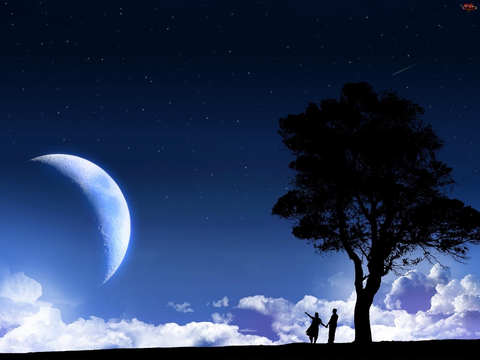 Drzewo, Księżyc, Ludzie