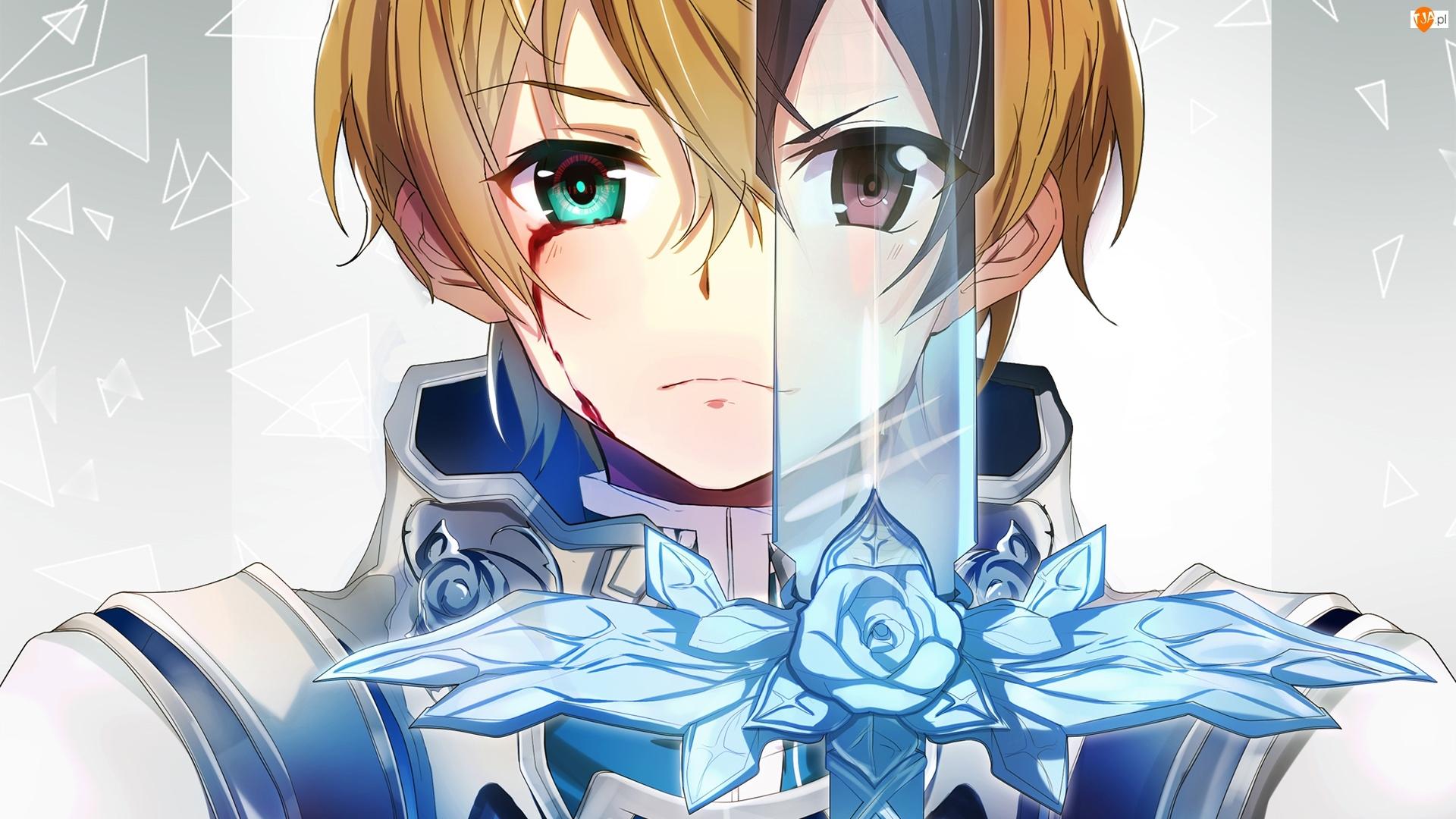 Rycerz, Sword Art Online, Miecz, Manga Anime