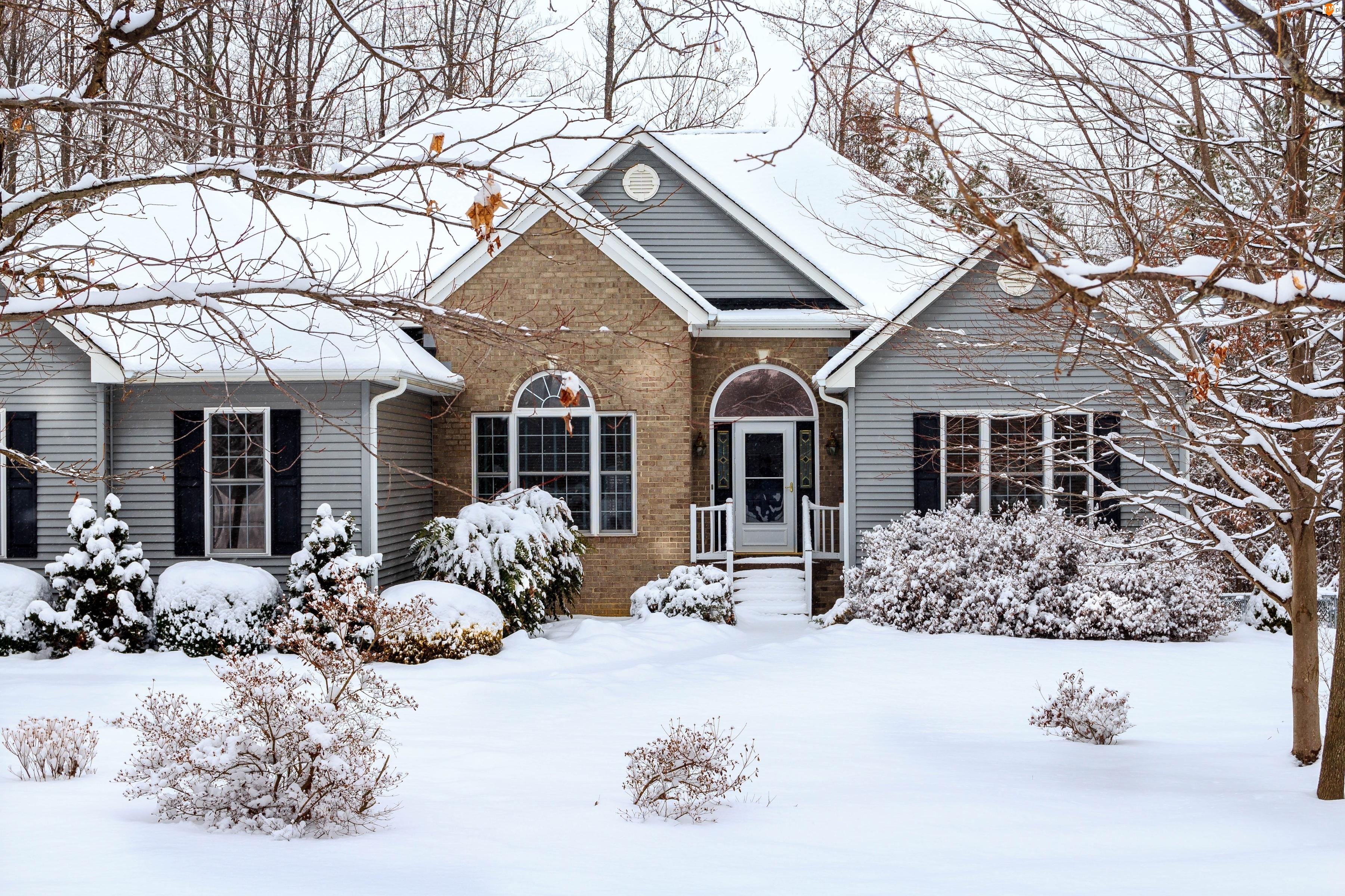 Śnieg, Drzewa, Zima, Niebo, Dom, Krzewy