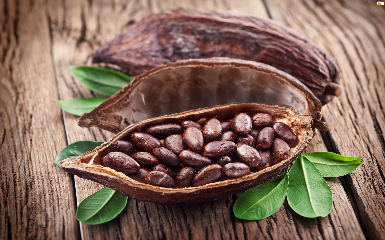 Kakao, Łupina, Ziarna
