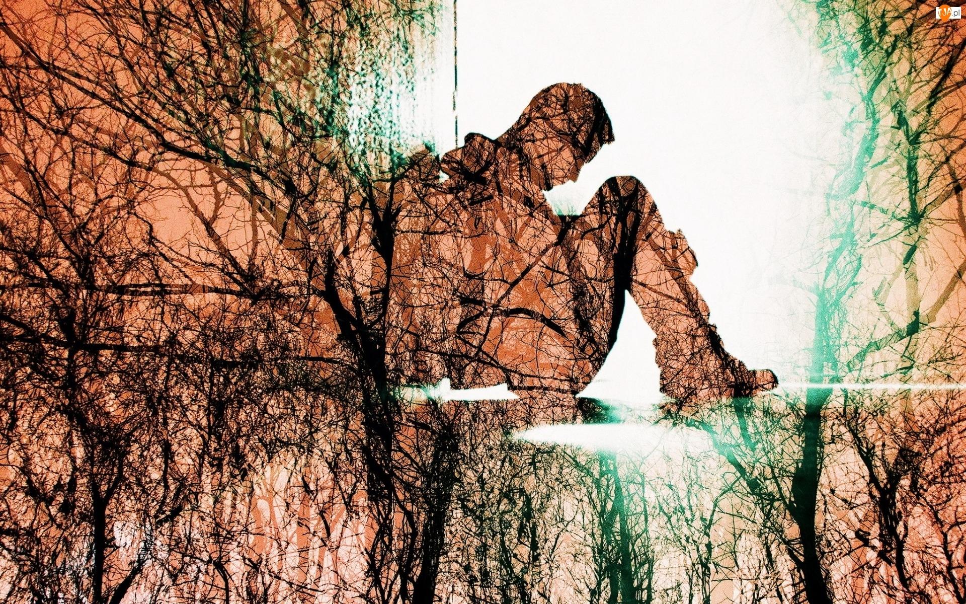 Drzewa, Grafika, Mężczyzna