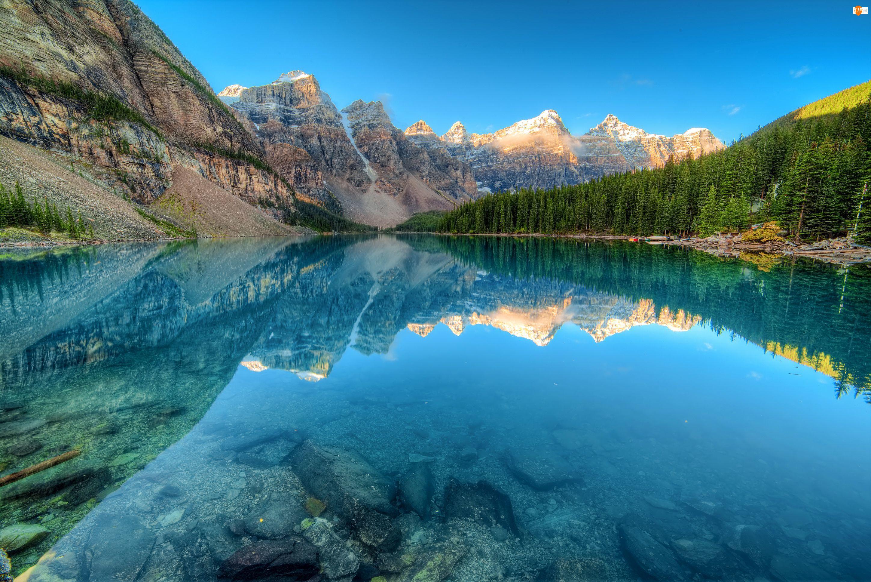 Jezioro Moraine, Kanada, Góry, Park Narodowy Banff, Lasy