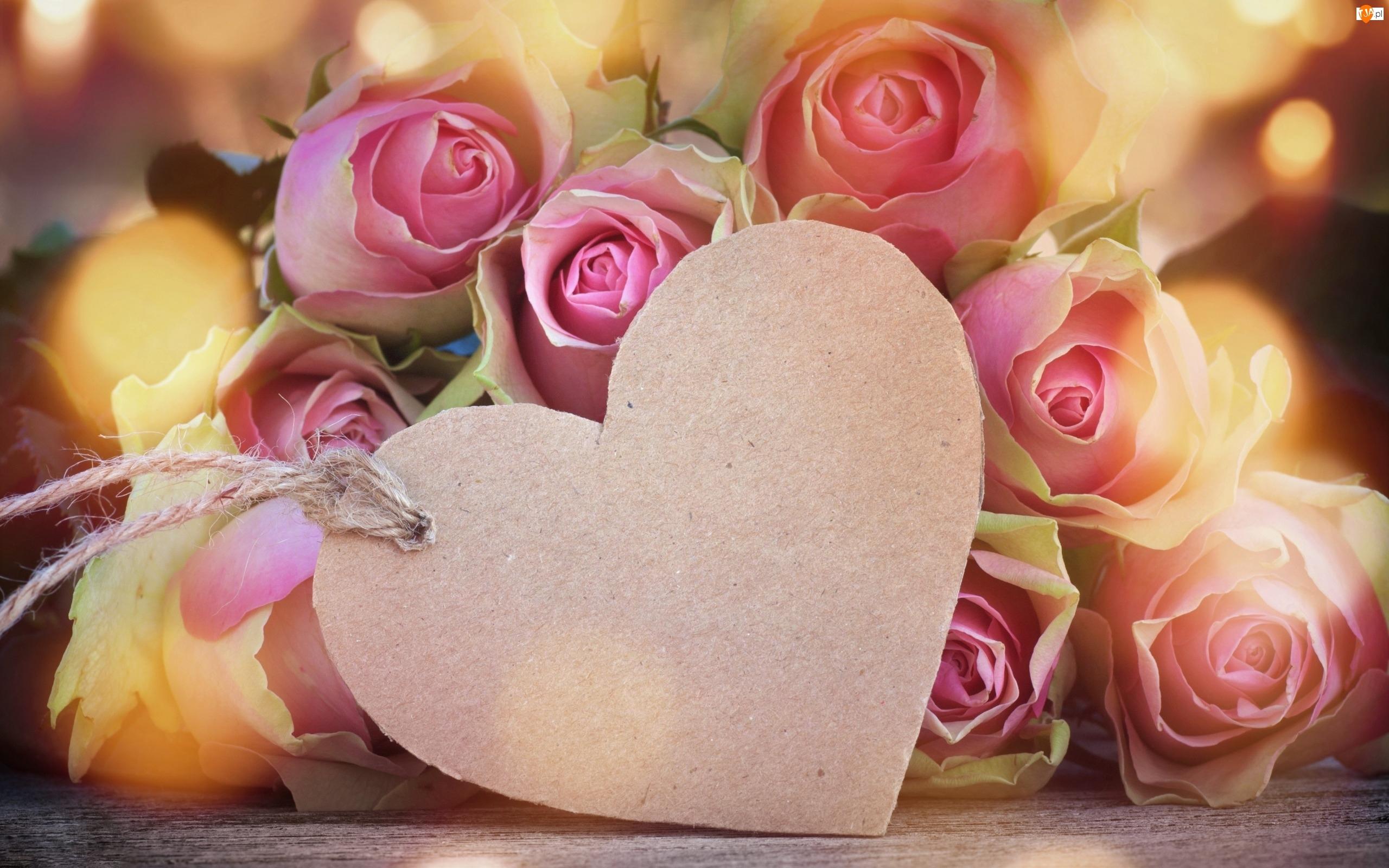 Serce, Róże, Kwiaty
