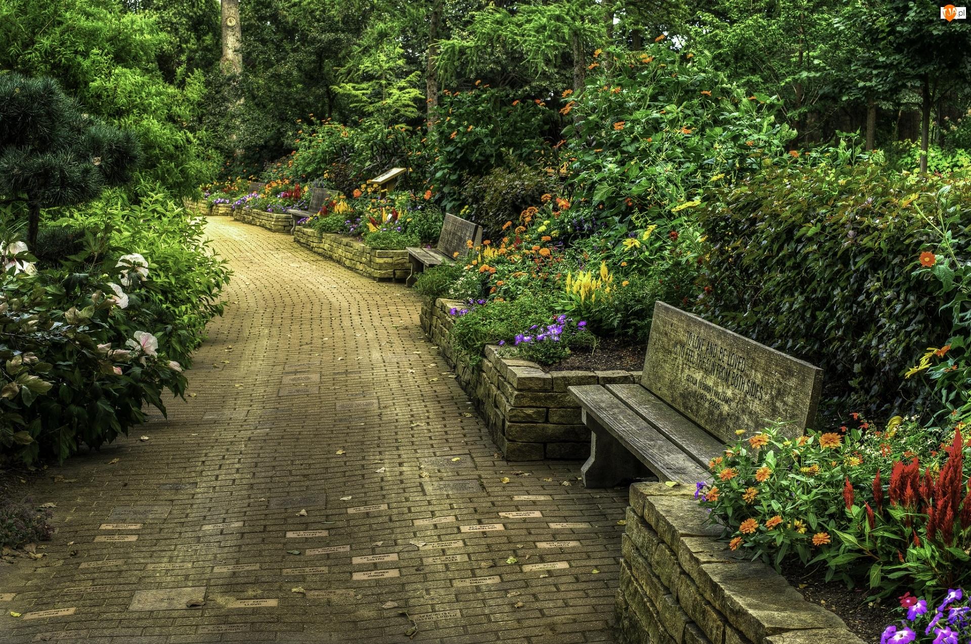 Kwiaty, Alejka, Drzewa, Stan Wisconsin, Ogród botaniczny Rotary Botanical Gardens, Stany Zjednoczone, Krzewy, Janesville, Ławki