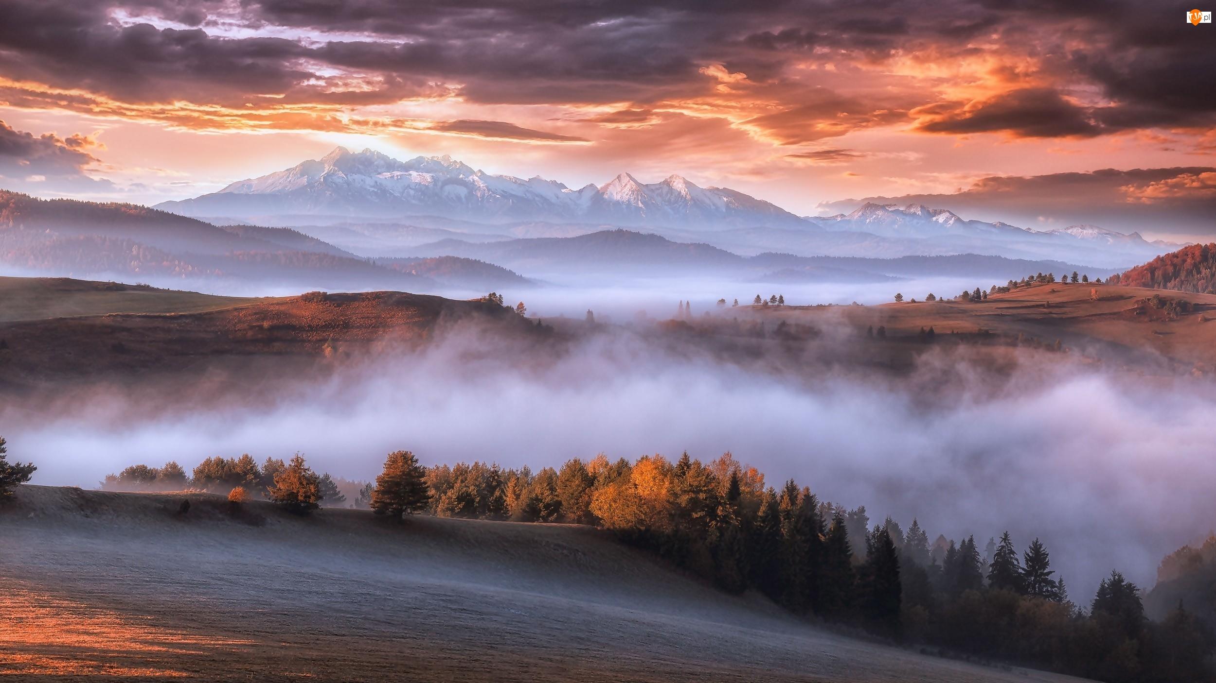 Wschód słońca, Góry Karpaty, Mgła, Lasy, Chmury