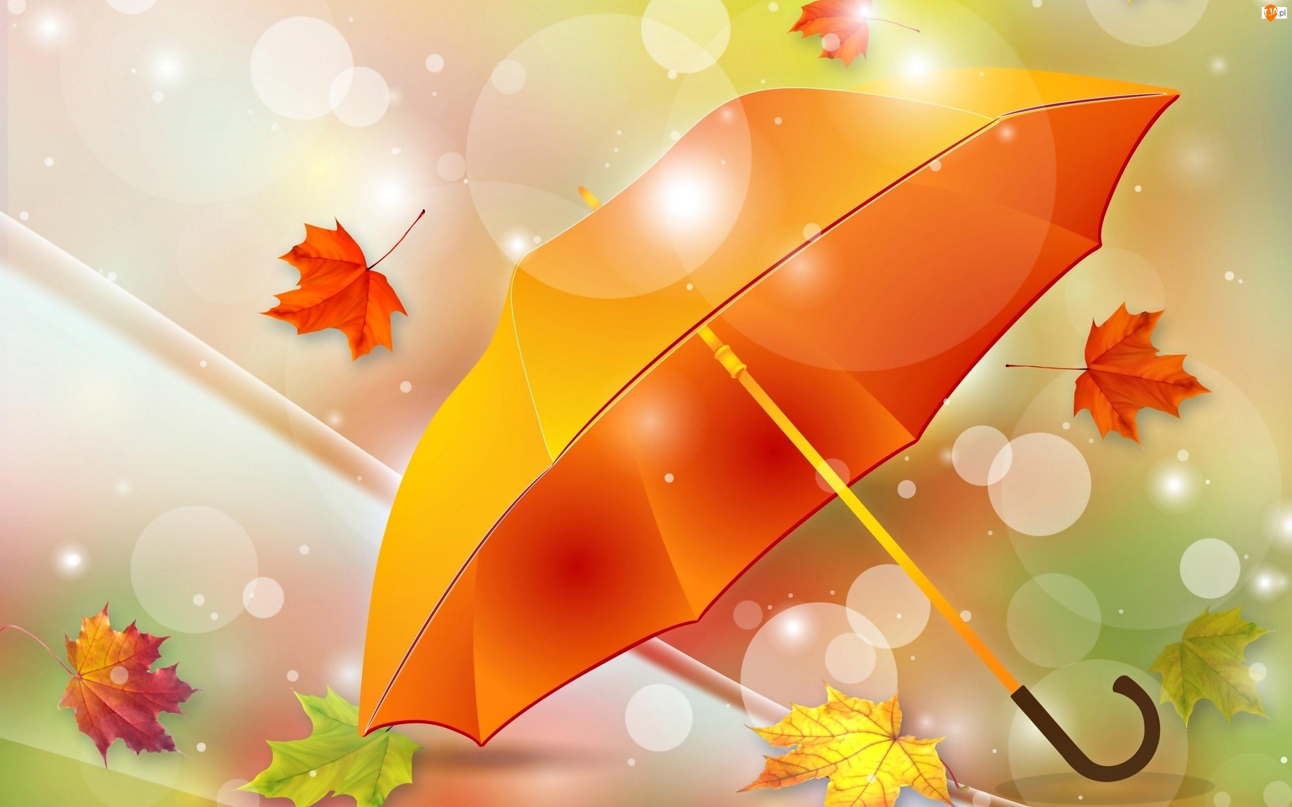 Jesień, Grafika 2D, Parasol, Liście