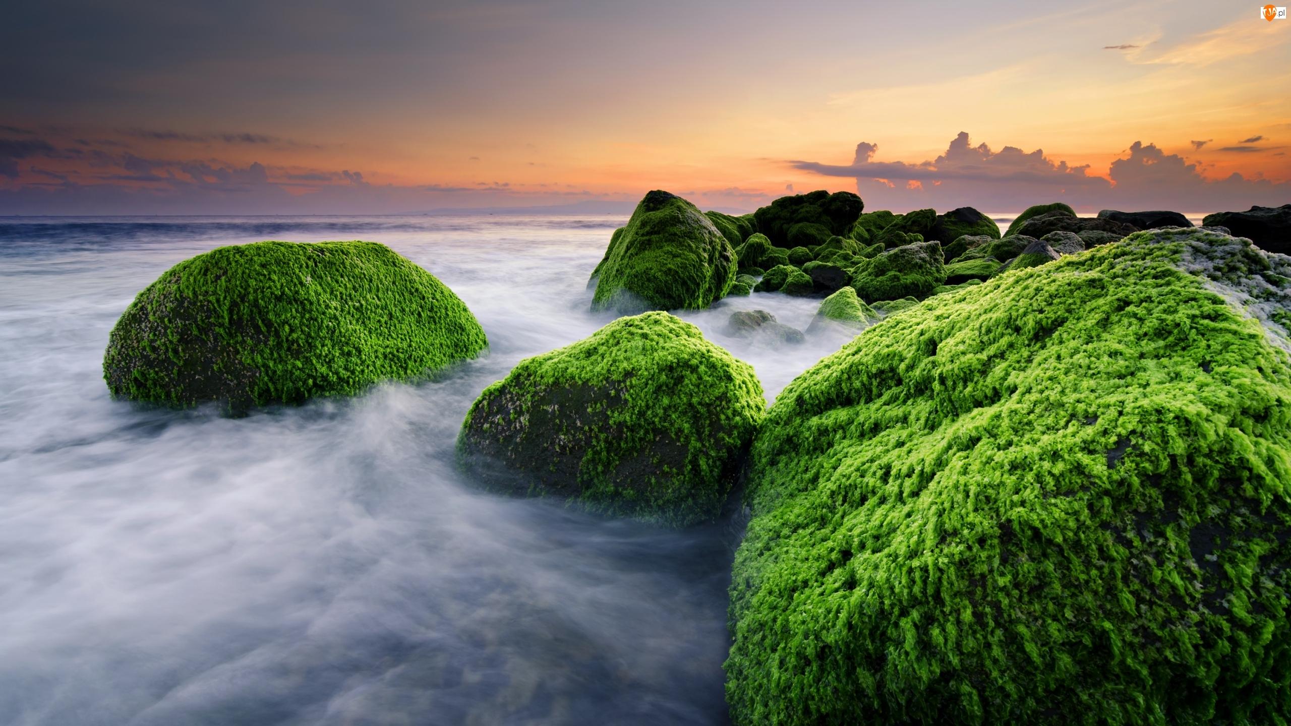 Kamienie, Morze, Bali, Indonezja, Wschód Słońca, Masceti Beach, Omszałe