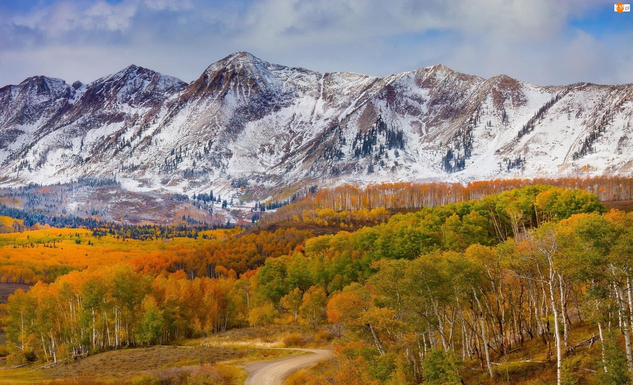 Góry, Przełęcz Ohio Pass, Stan Kolorado, Lasy, Stany Zjednoczone, Droga, Jesień, Drzewa