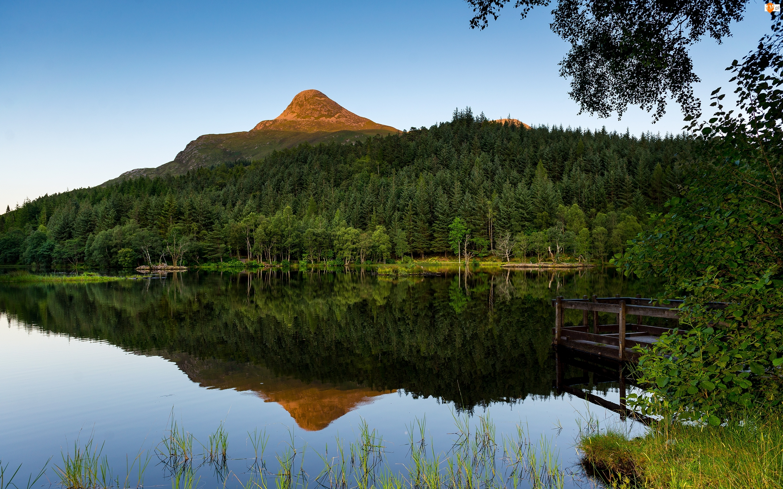 Pomost, Szkocja, Jezioro, Góry, Las Glencoe Lochan