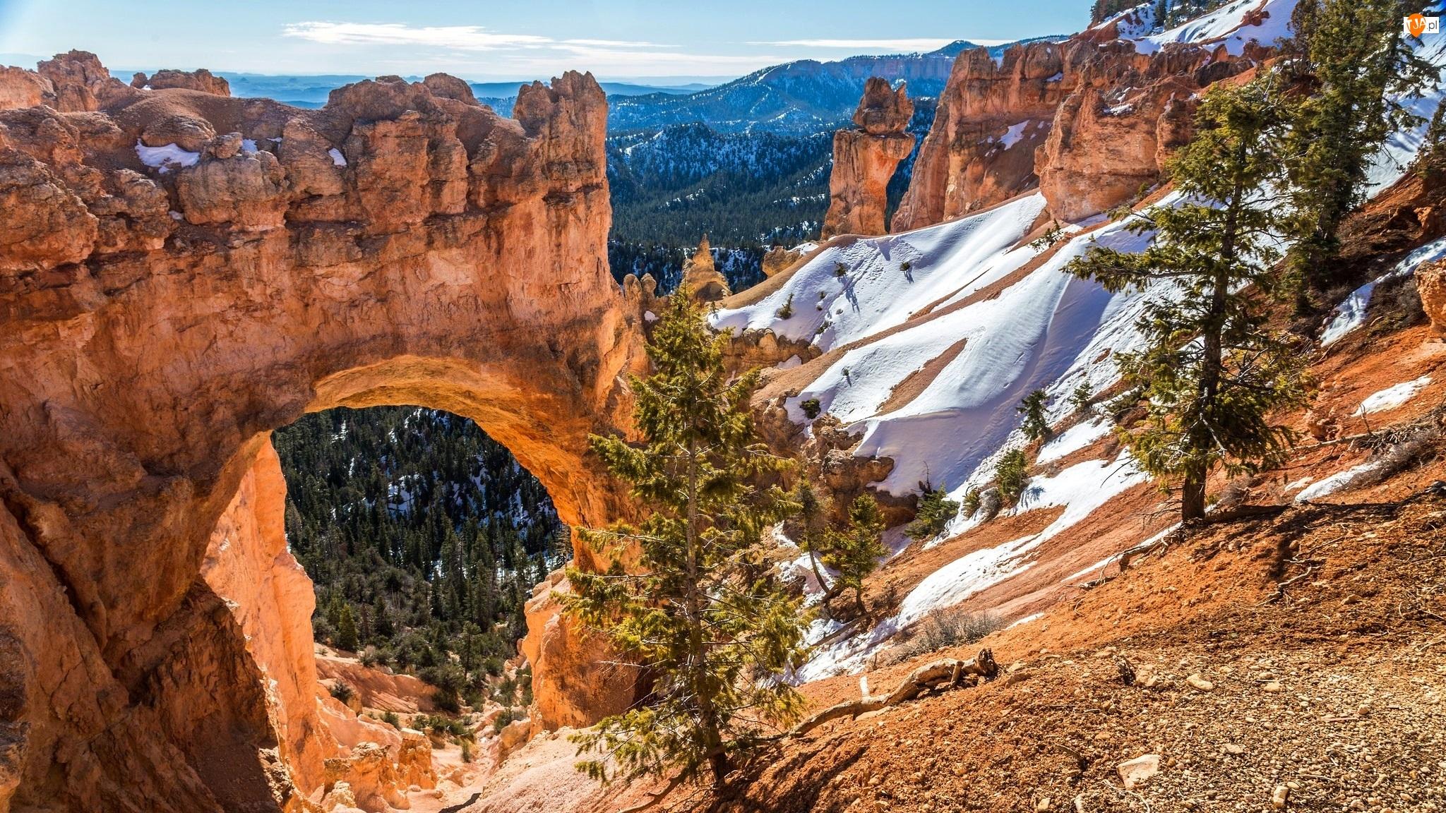 Kanion, Góry, Stan Utah, Łuk Natural Bridge, Stany Zjednoczone, Skały, Park Narodowy Bryce Canyon, Drzewa
