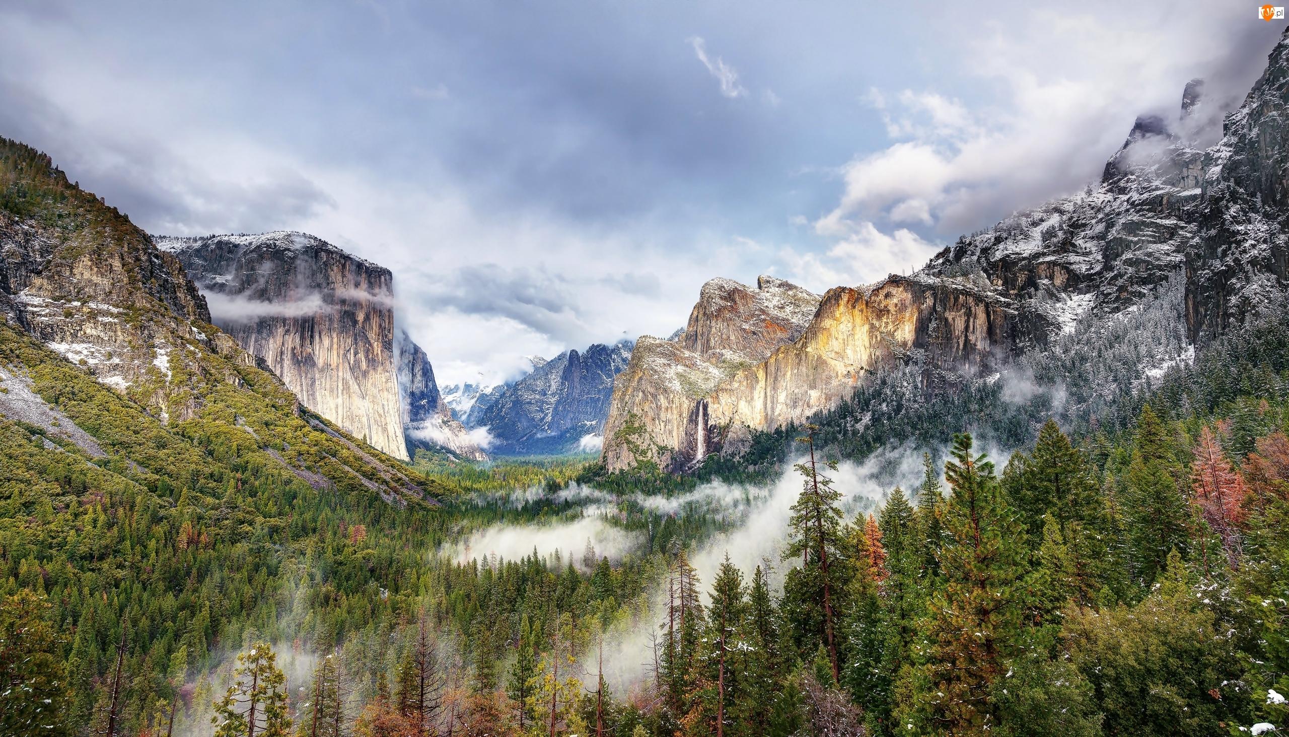 Las, Dolina Yosemite Valley, Kalifornia, Stany Zjednoczone, Mgła, Park Narodowy Yosemite, Góry