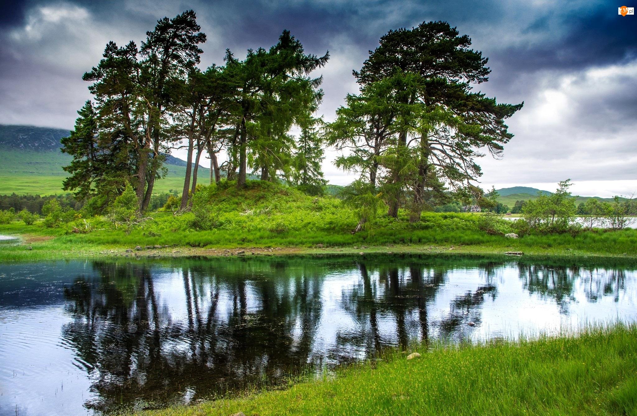 Rzeka, Odbicie, Łąka, Drzewa