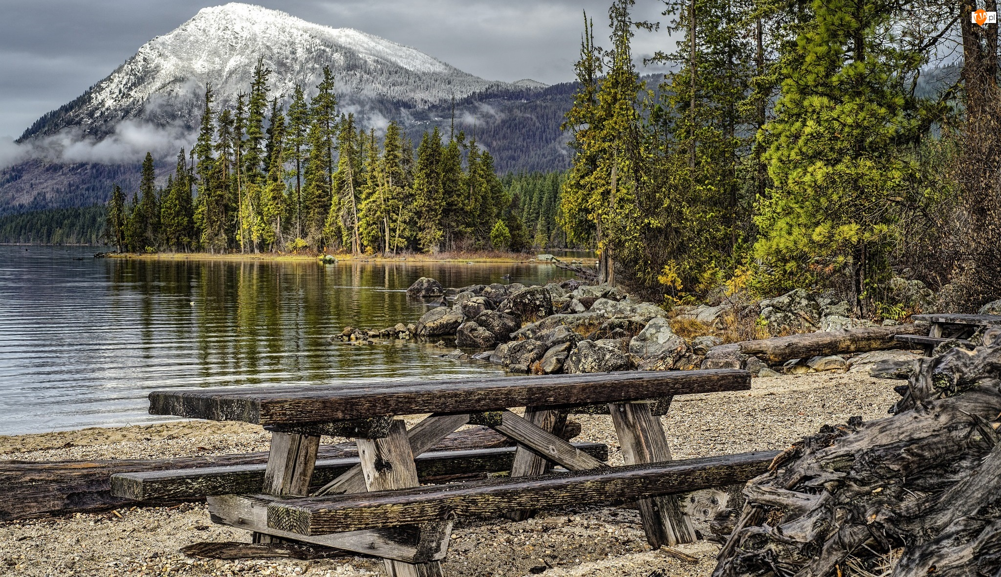 Drzewa, Góry, Stan Waszyngton, Stany Zjednoczone, Ławki, Park Stanowy Lake Wenatchee, Jezioro