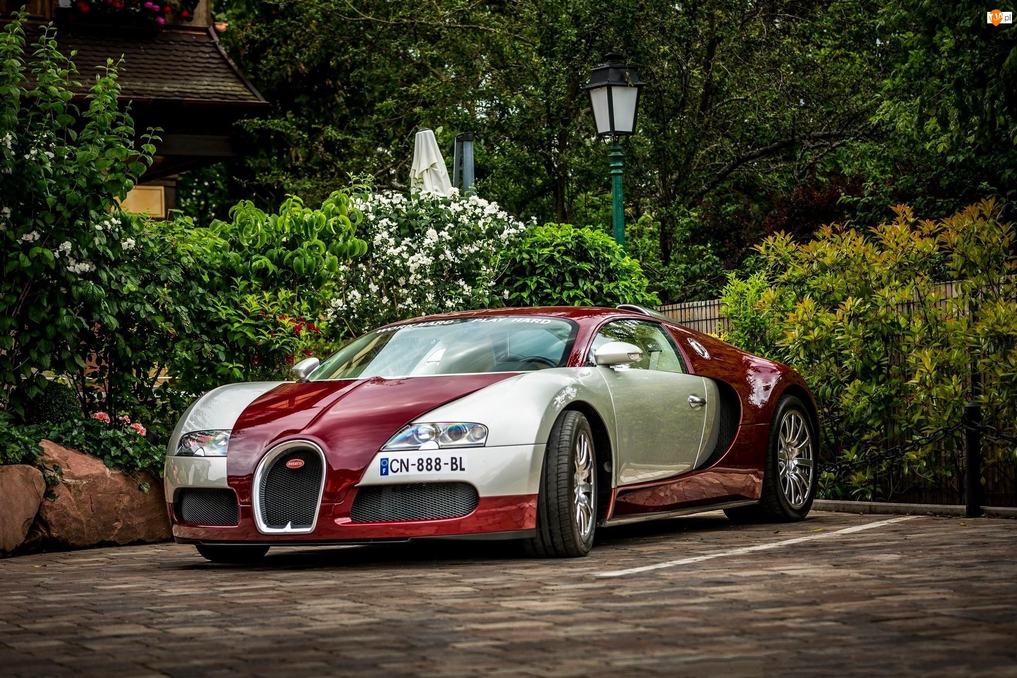 Bugatti Veyron, Dom, Auto, Posesja