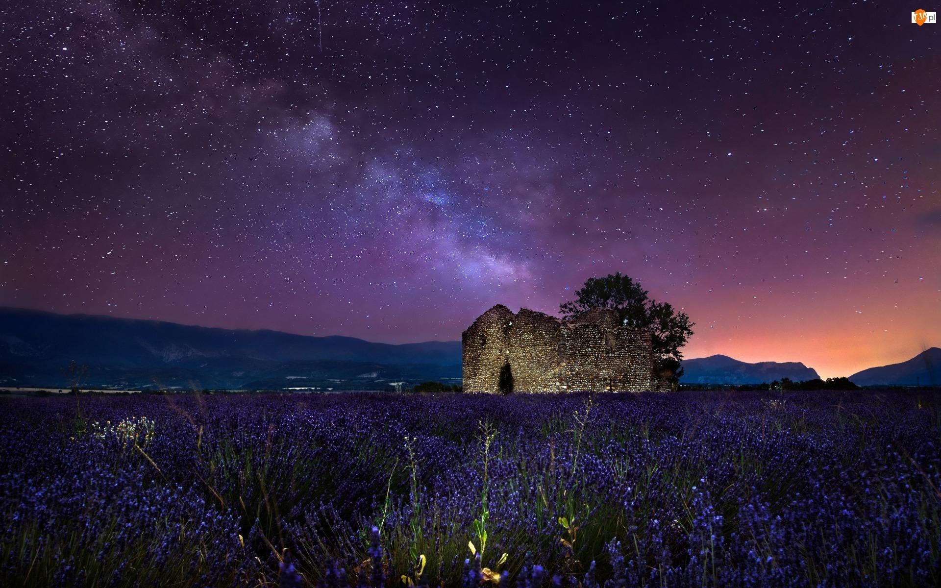 Droga mleczna, Gwiazdy, Prowansja, Pole, Francja, Ruiny, Płaskowyż Valensole, Lawenda wąskolistna
