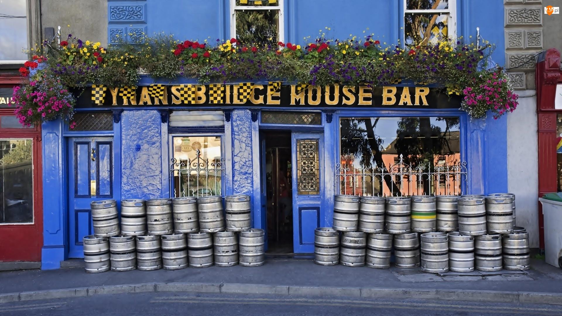 Dekoracyjne, Piwa, Pub, Irlandzki, Kwiaty, Beczki, Budynek