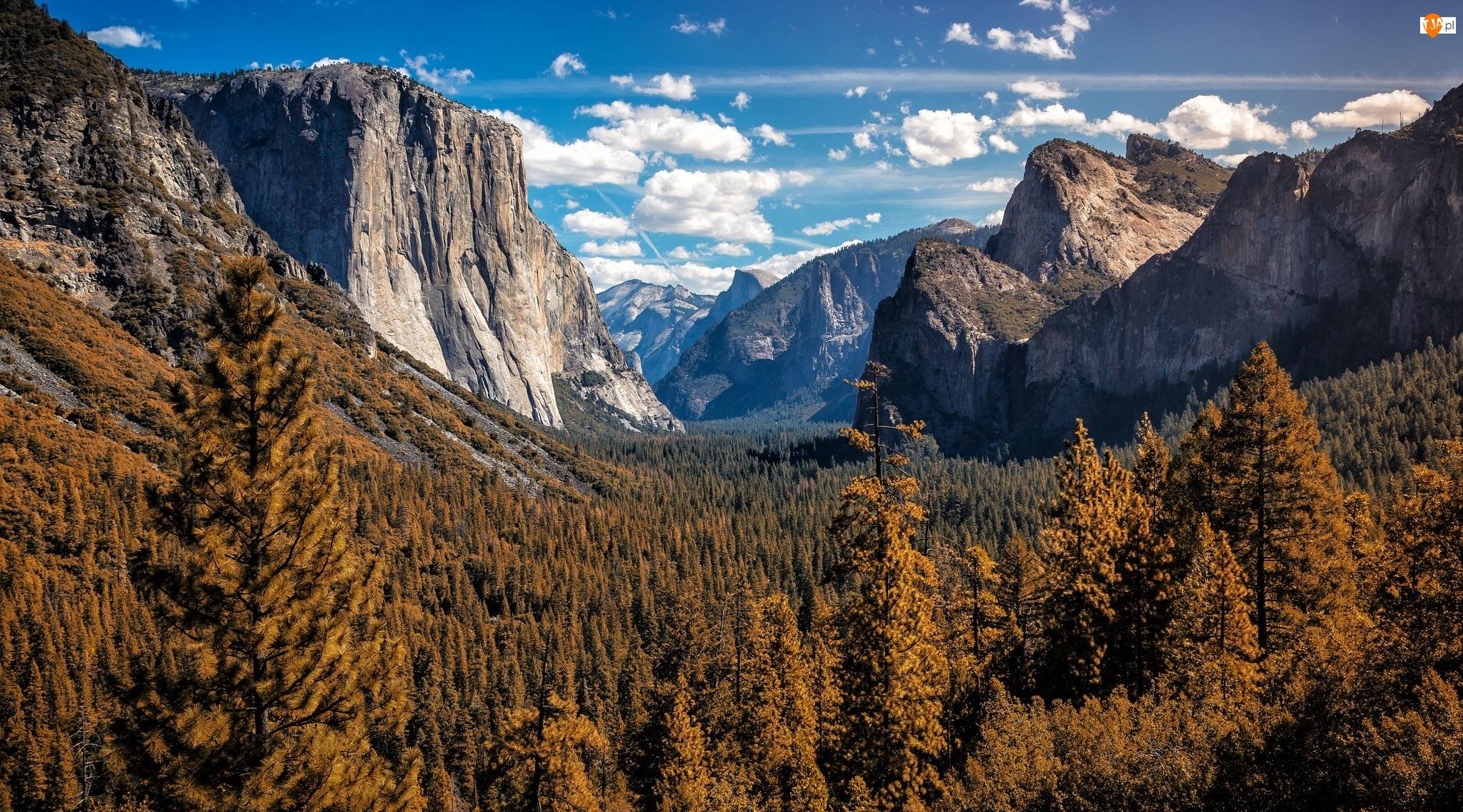 Drzewa, Dolina Yosemite Valley, Stan Kalifornia, Stany Zjednoczone, Chmury, Park Narodowy Yosemite, Góry