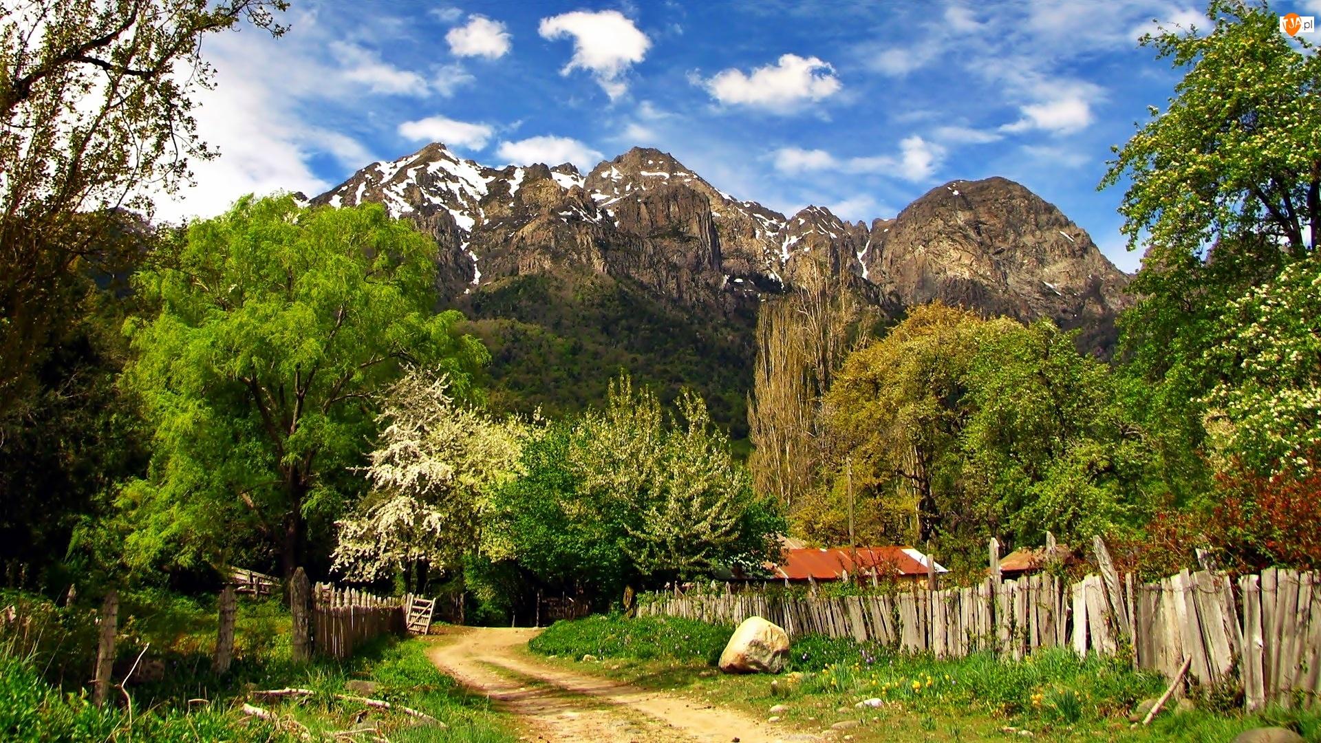 Góry, Wioska, Droga, Drzewa
