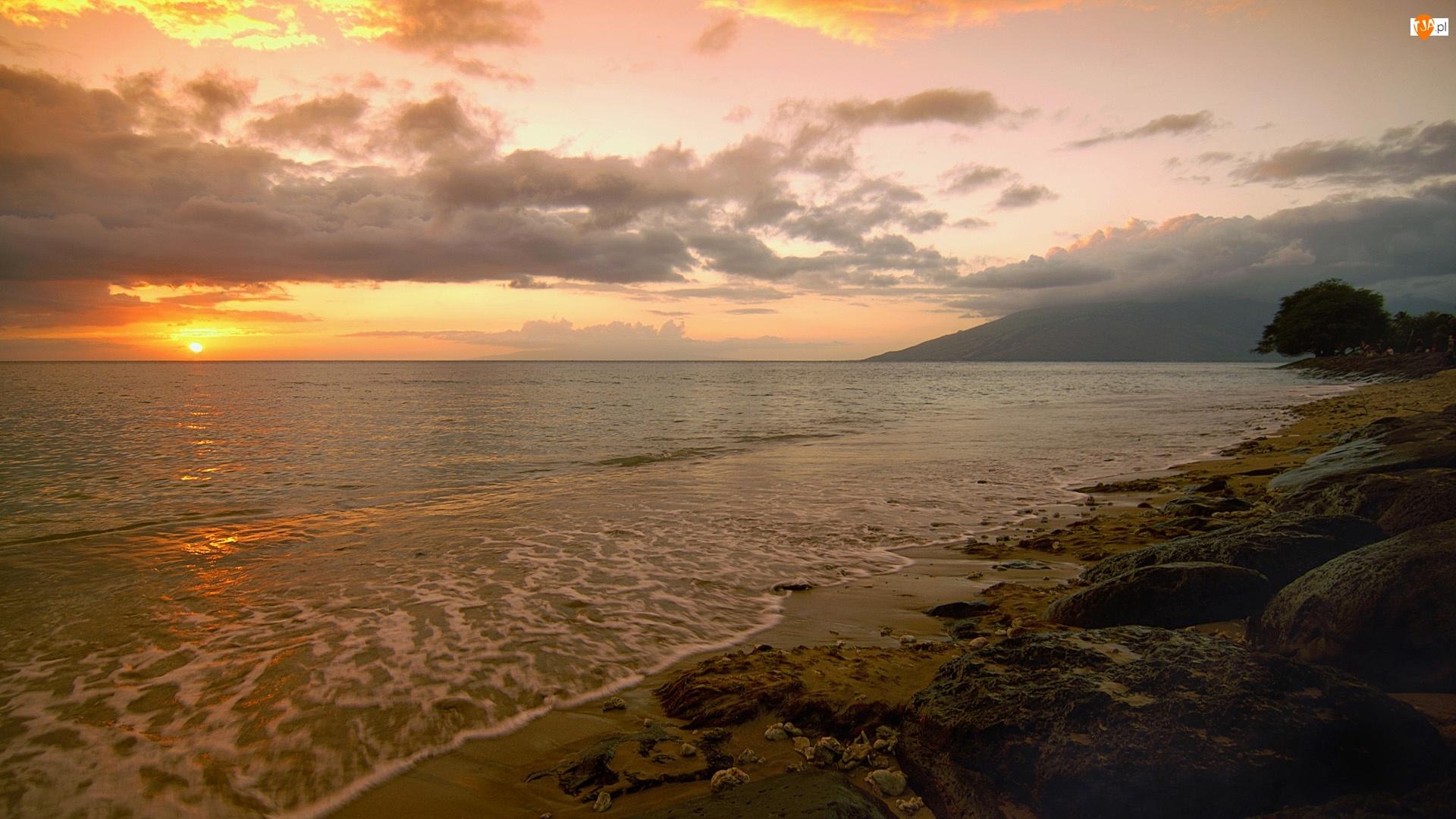 Plaża, Zachód Słońca, Morze, Wybrzeże