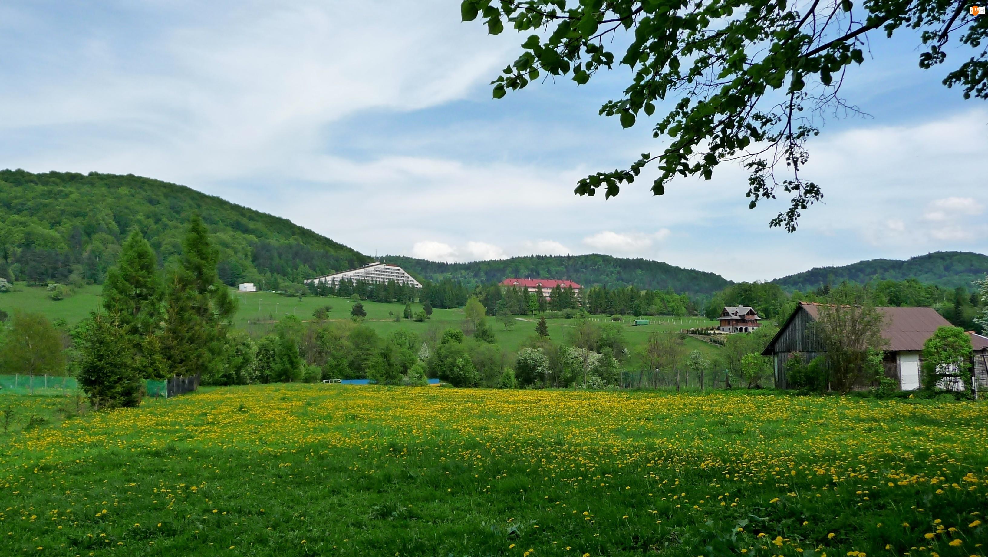 Hotel, Wiosenne klimaty, Wzgórza