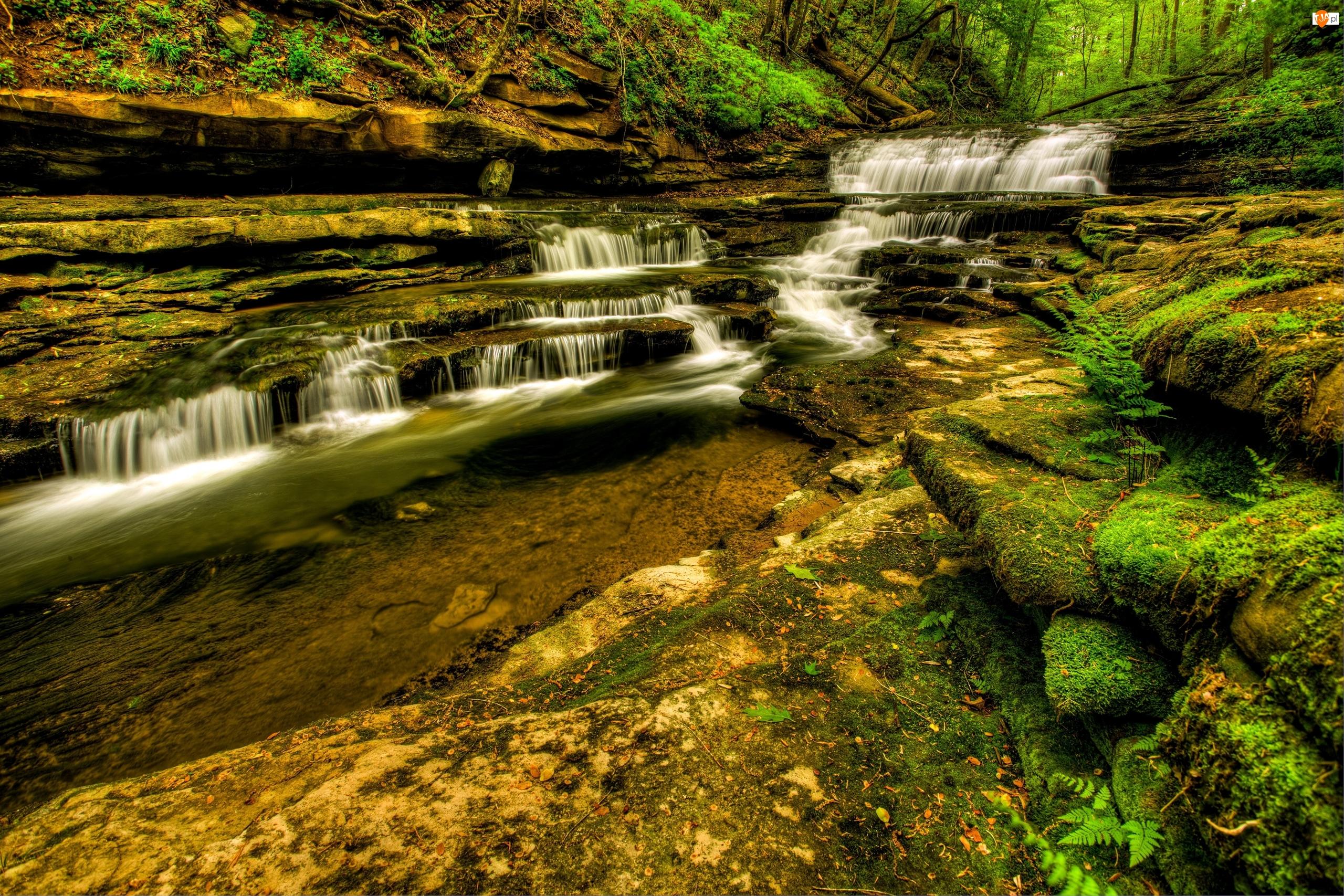 Skały, Stany Zjednoczone, Wodospady Meadow Creek Cascades, Kaskada