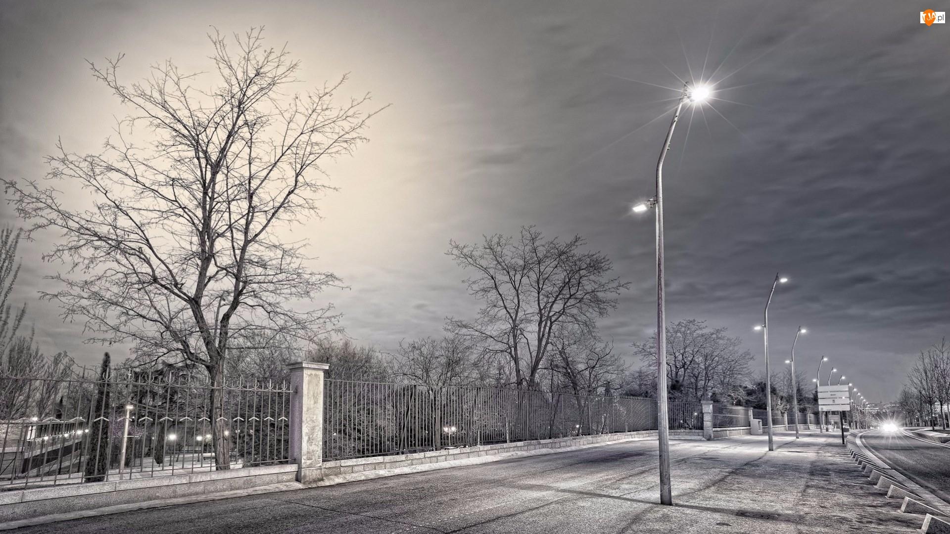 Drzewa, Ulica, Latarnie, Ogrodzenie, Wieczór