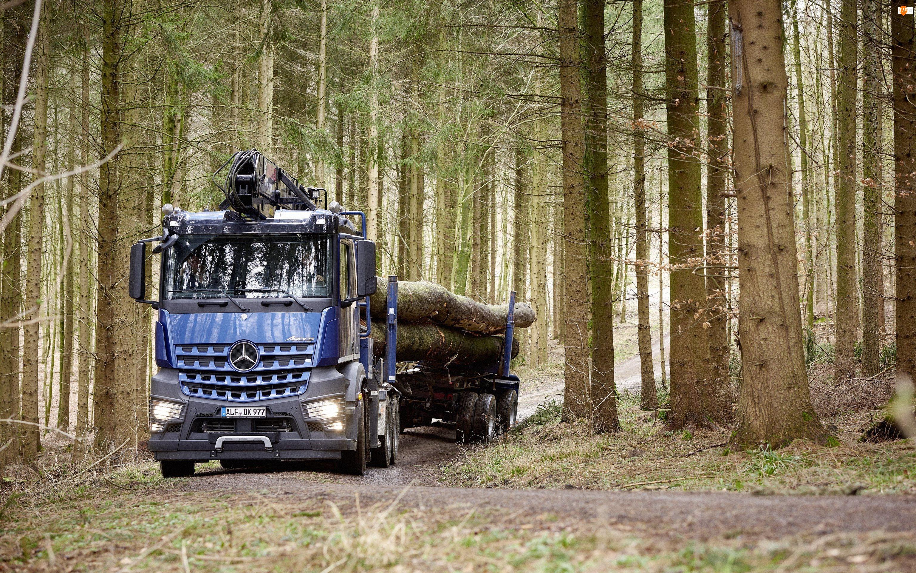 Ciężarówka, Las, Mercedes-Benz Arocs 2658 L 6×4, 2016