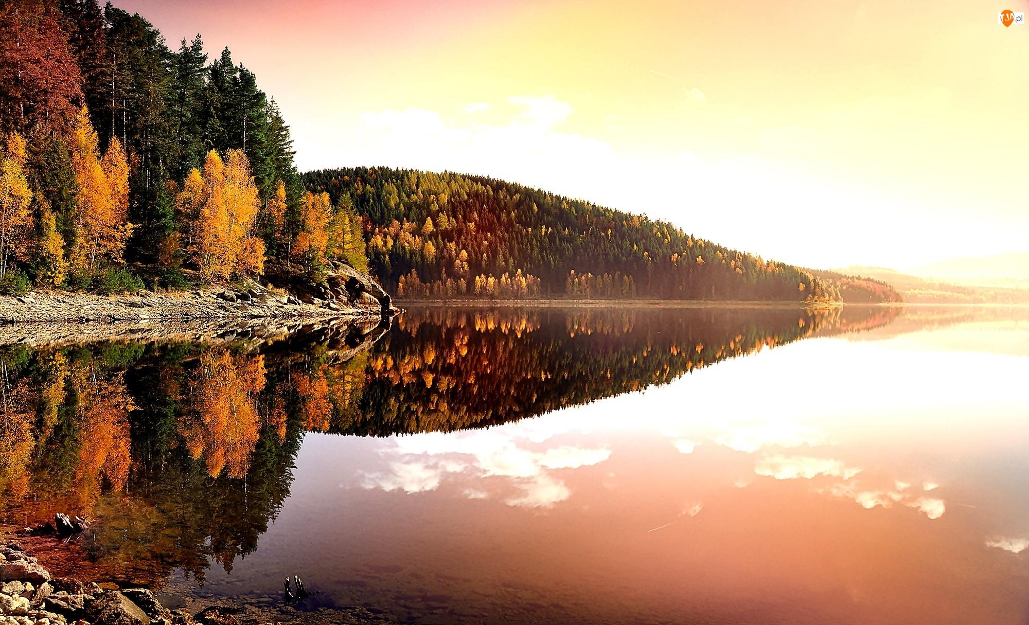 Jezioro, Jesień, Lasy, Odbicie