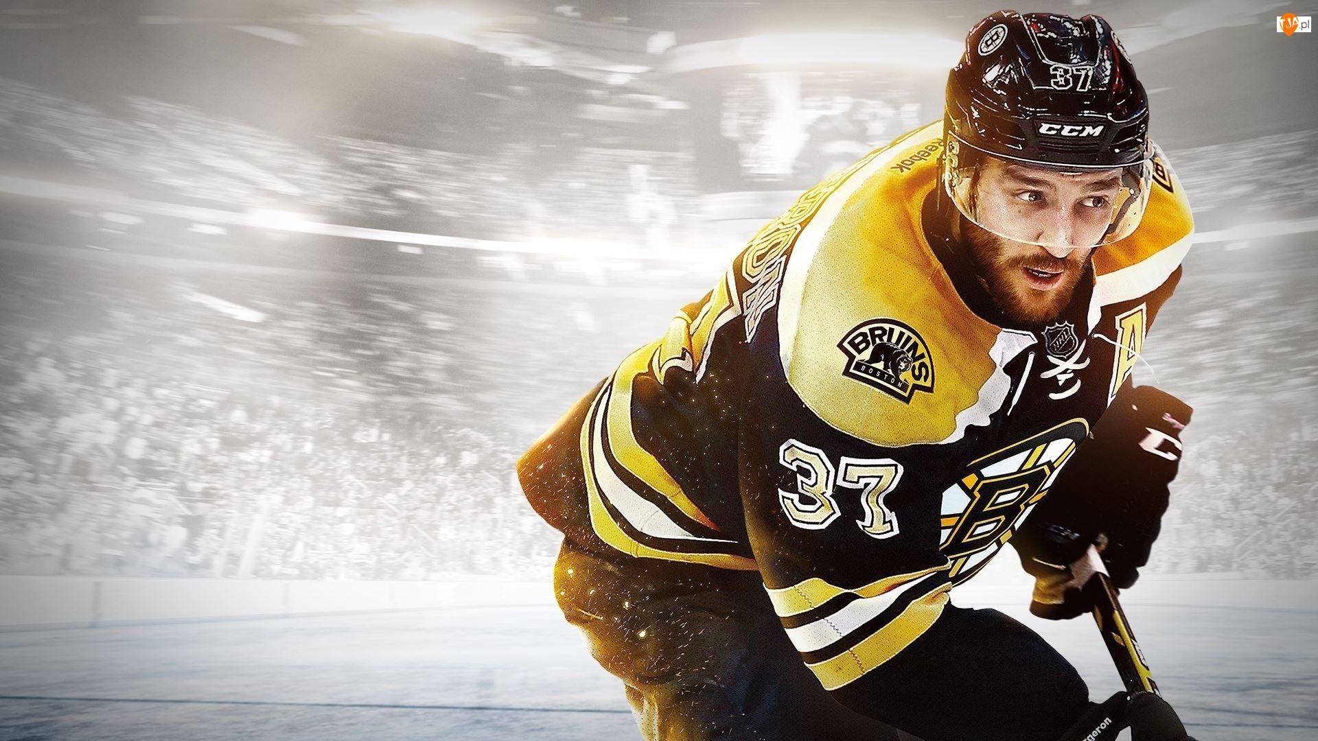 Hokej, Patrice Bergeron