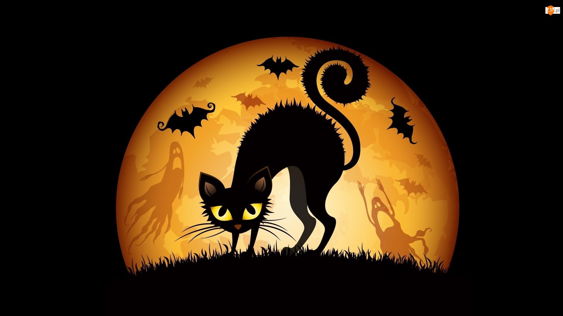 Kot, Grafika, Nietoperze, Halloween