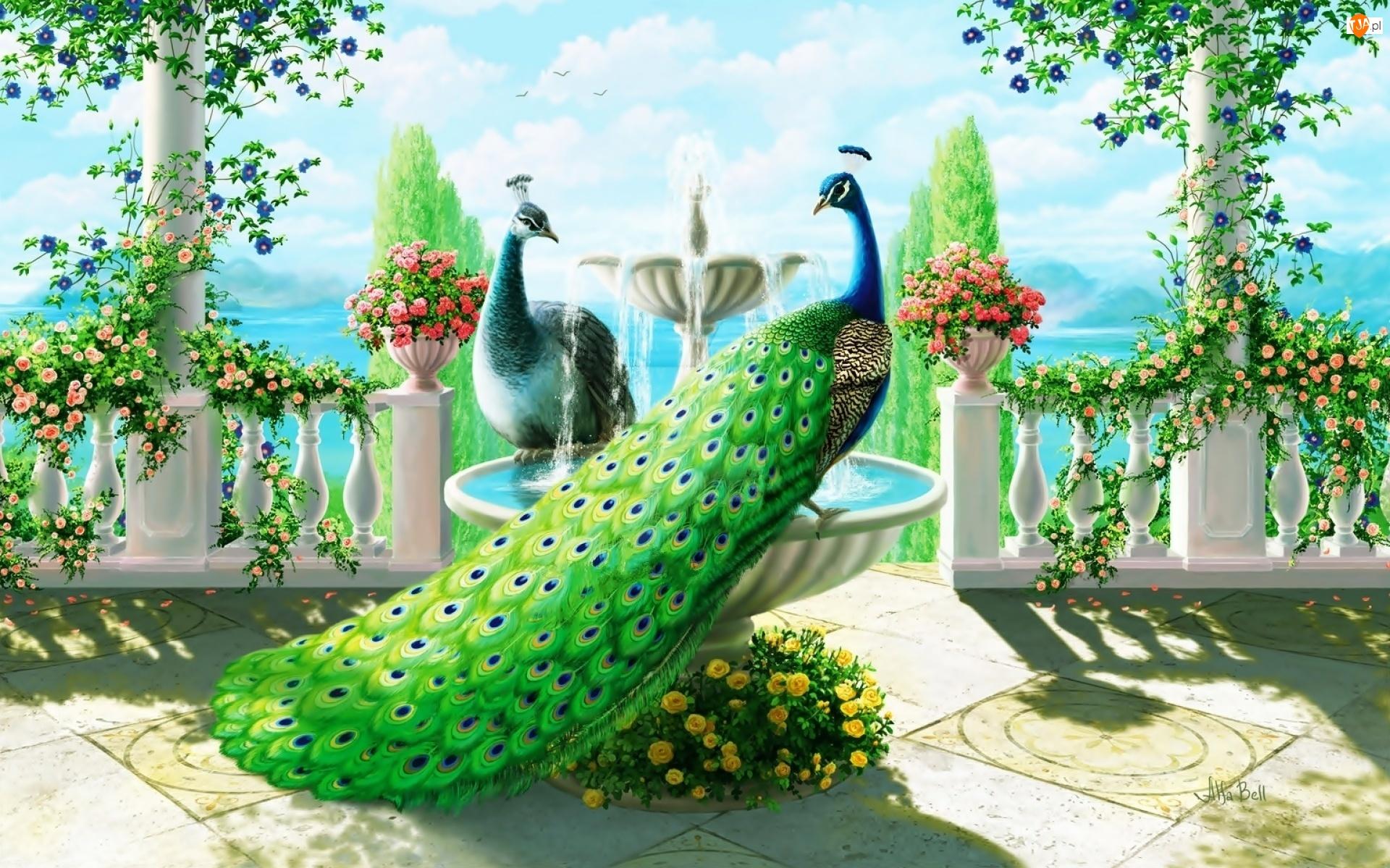Róże, Taras, Pawia, Piękna, Morze, Fontanna, Pnące