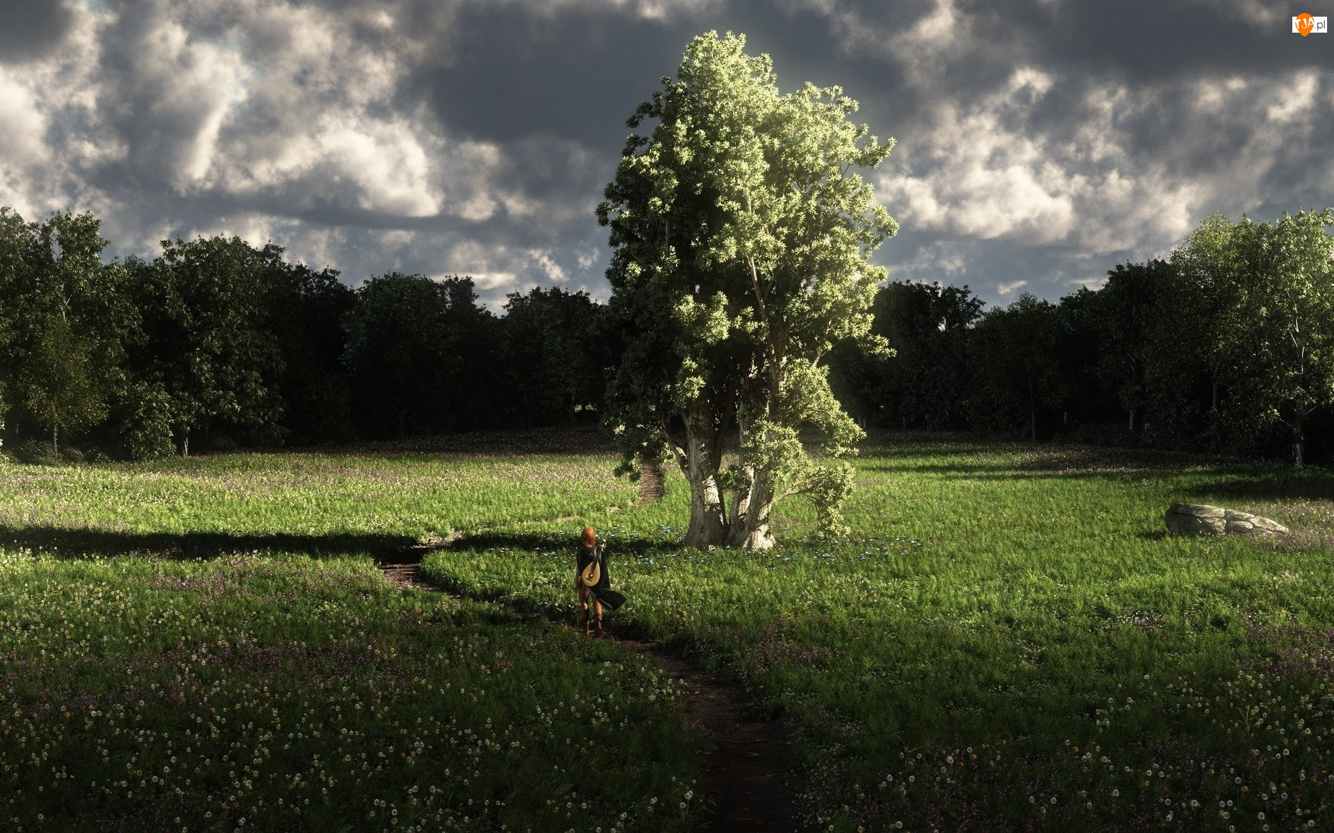 Dziewczyna, Łąka, Drzewa