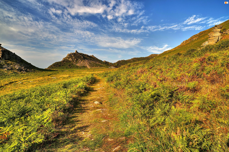 Ścieżka, Wielka Brytania, Góra, Exmoor National Park