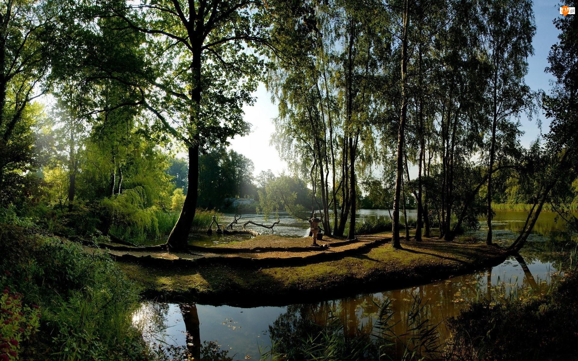 Jeziorko, Park