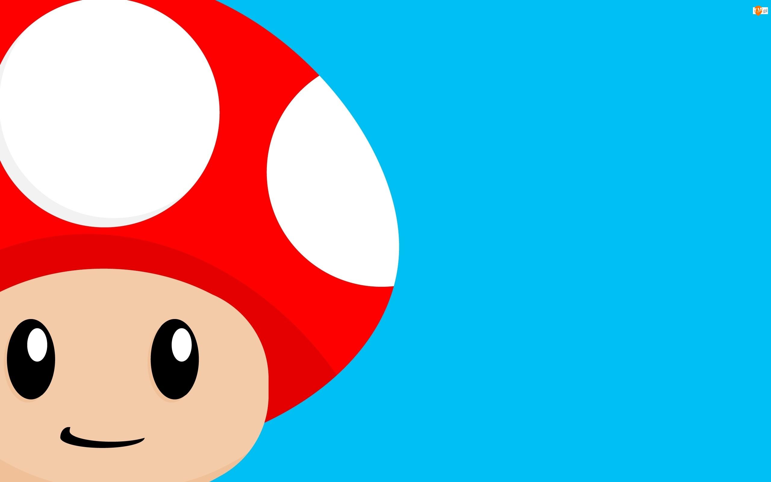 Grzybek, Mario