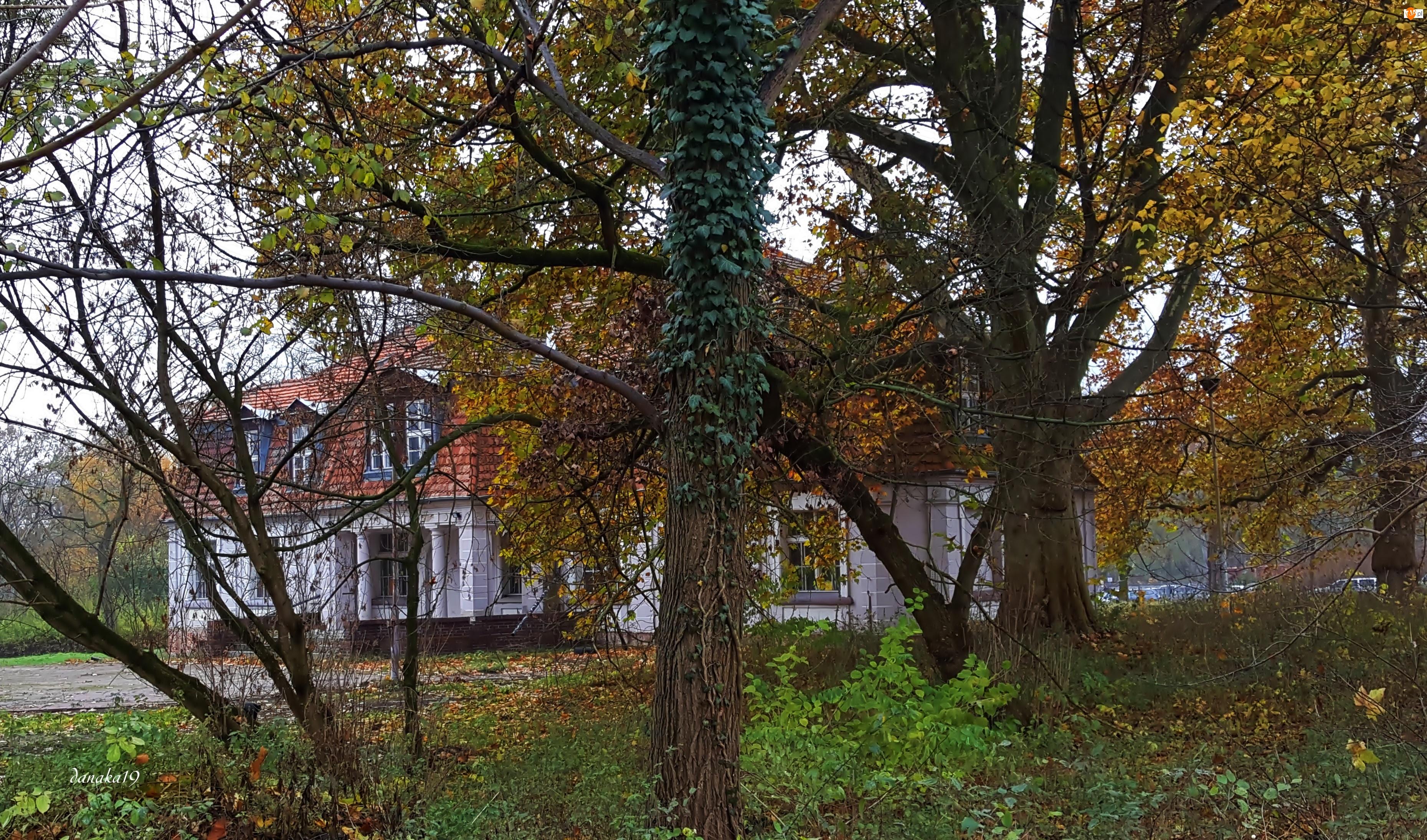 Odrestaurowany, Jesień, Dworek, Park