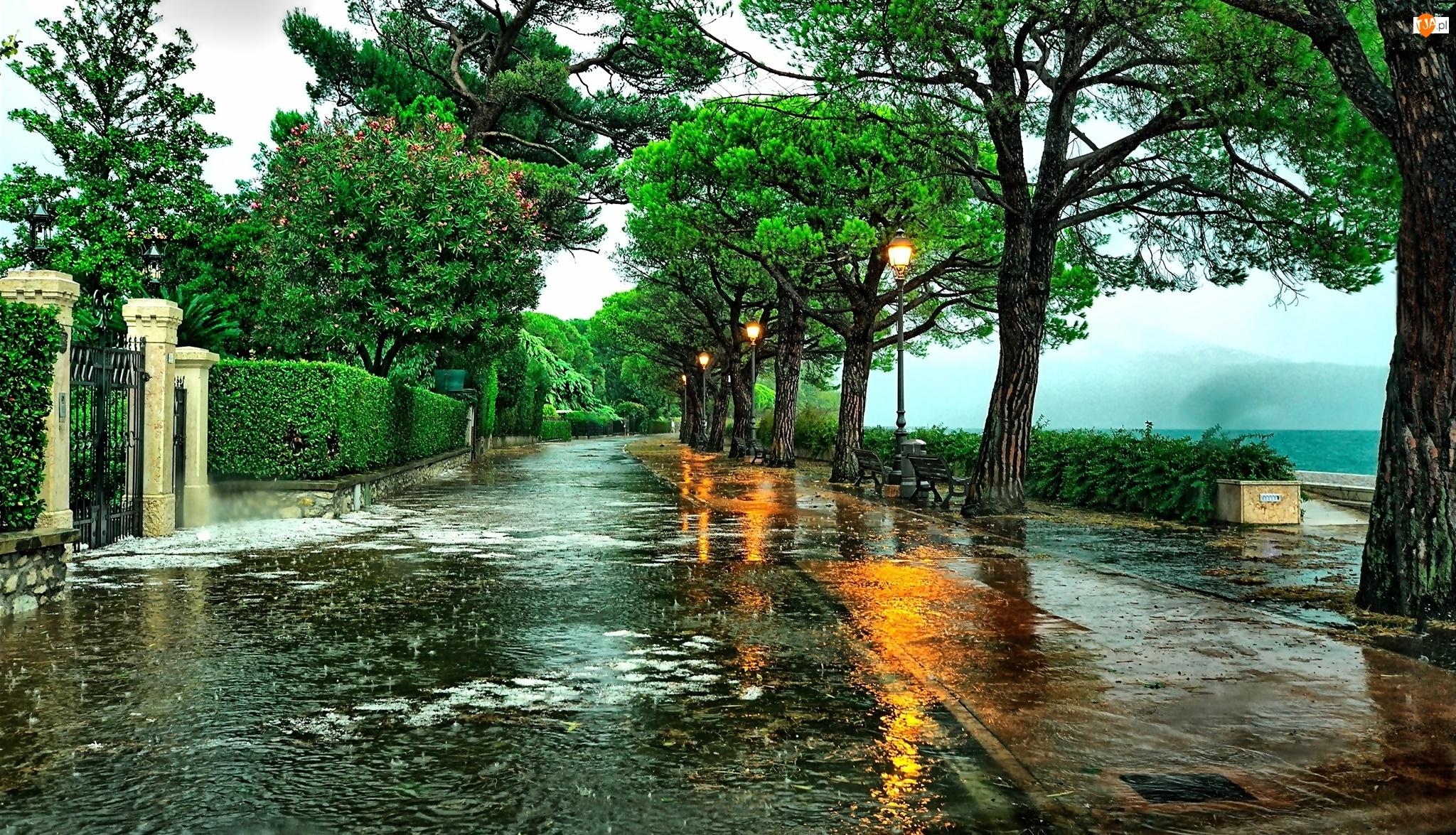 Deszcz, Włochy, Ulica, Toscolano-Moderno, Drzewo