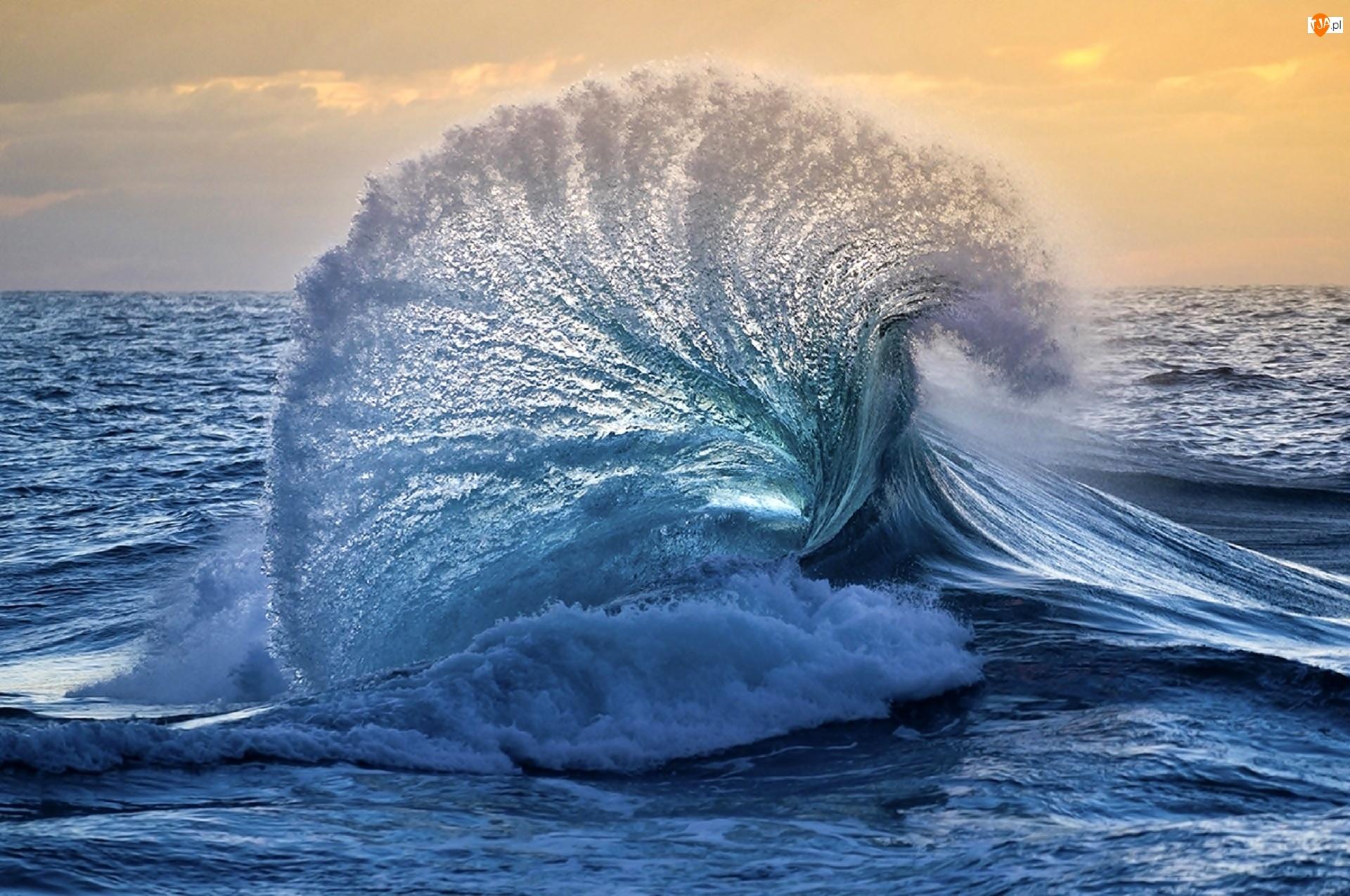 Morze, Fala