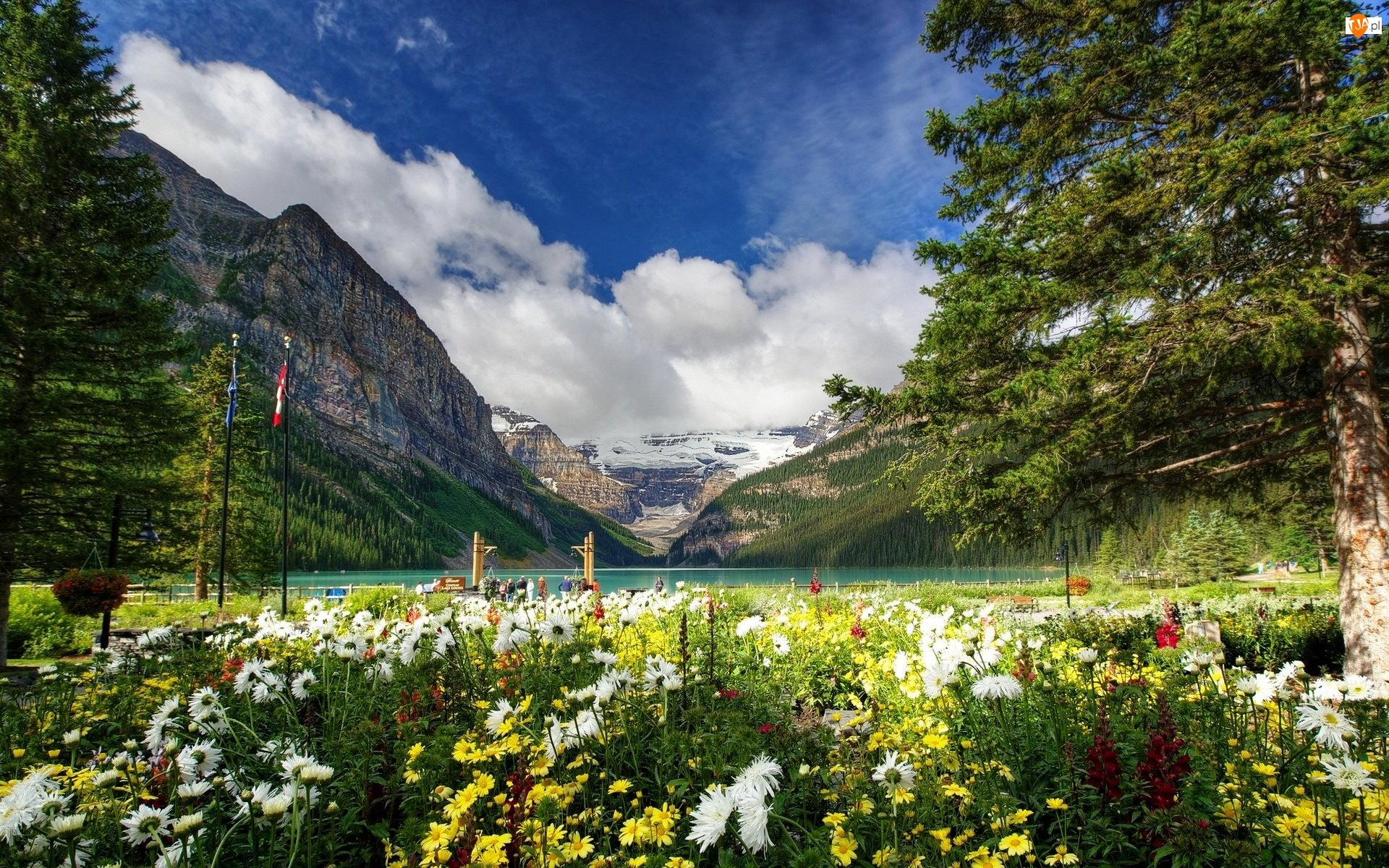 Park Narodowy Banff, Jezioro Lake Louise, Kanada, Drzewa, Prowincja Alberta, Góry
