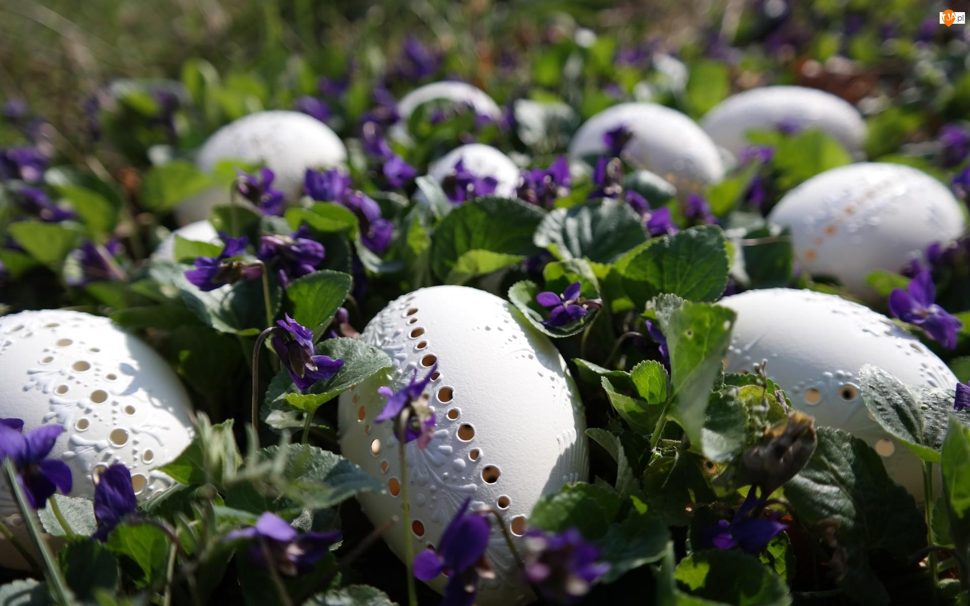 Wielkanoc, Fiołki wonne, Pisanki, Ażurowe