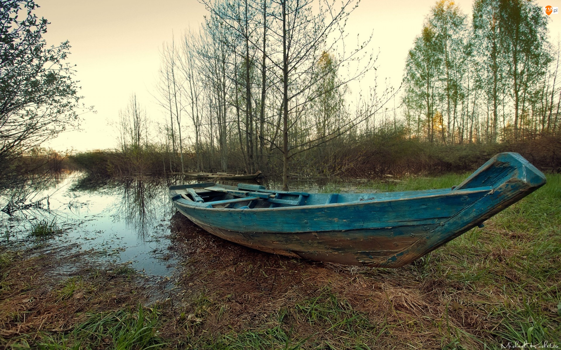 Bagno, Jesień, Łódź, Drzewa